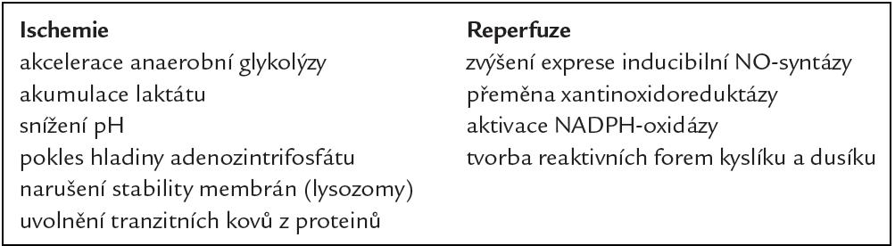 Nežádoucí změny probíhající v organizmu při ischemii a reperfuzi.