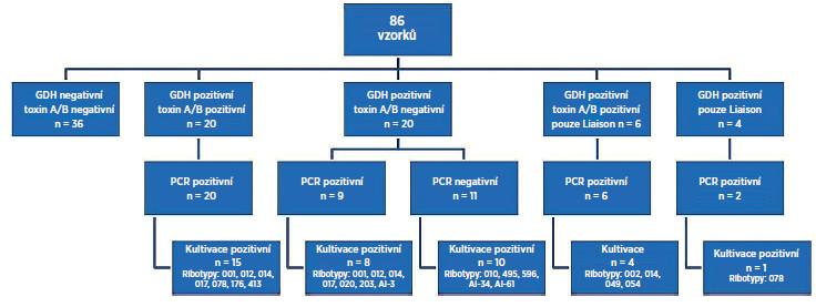 Výsledky porovnávací studie testů Quik Chek Complete<sup>®</sup>, Liaison<sup>®</sup> s konfirmací Real-Time PCR <em>C. difficile</em> Elite MGB<sup>®</sup> a kultivace s následnou ribotypizací kmene  Vysvětlivky: PCR – polymerázová řetězová reakce, GDH – glutamát dehydrogenáza Fig 1. Results of the comparative study of the C. difficile Quik Chek Complete<sup>®</sup> test and Liaison<sup>®</sup> <em>C. difficile</em> GDH and Toxins AαB test with confirmation by Real-Time PCR <em>C. difficile</em> Elite MGB<sup>®</sup>test and culture followed by PCR ribotyping Note: PCR – polymerase chain reaction, GDH – glutamate dehydrogenase