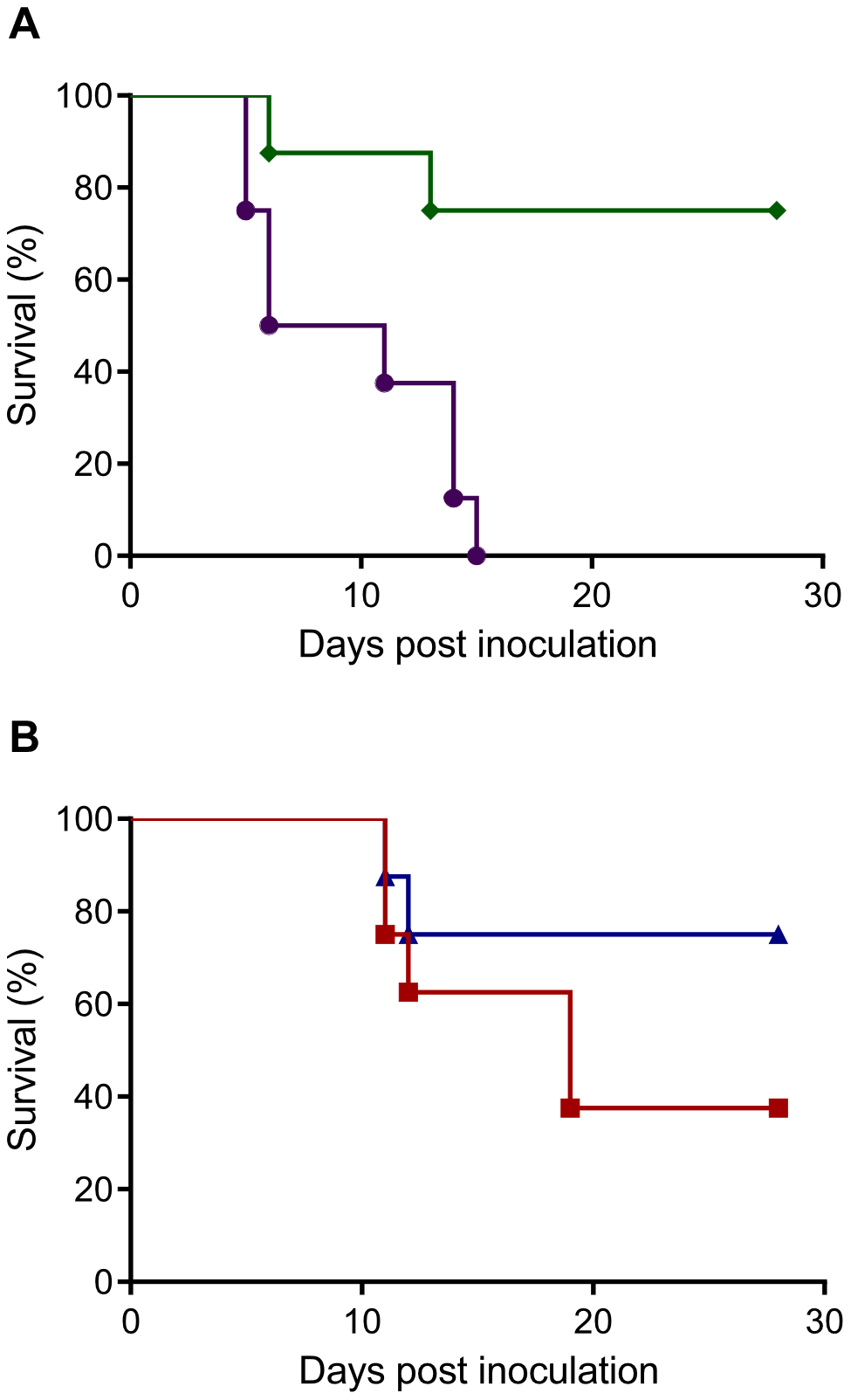 Survival of Syrian hamsters after inoculation with Nipah virus via different routes.
