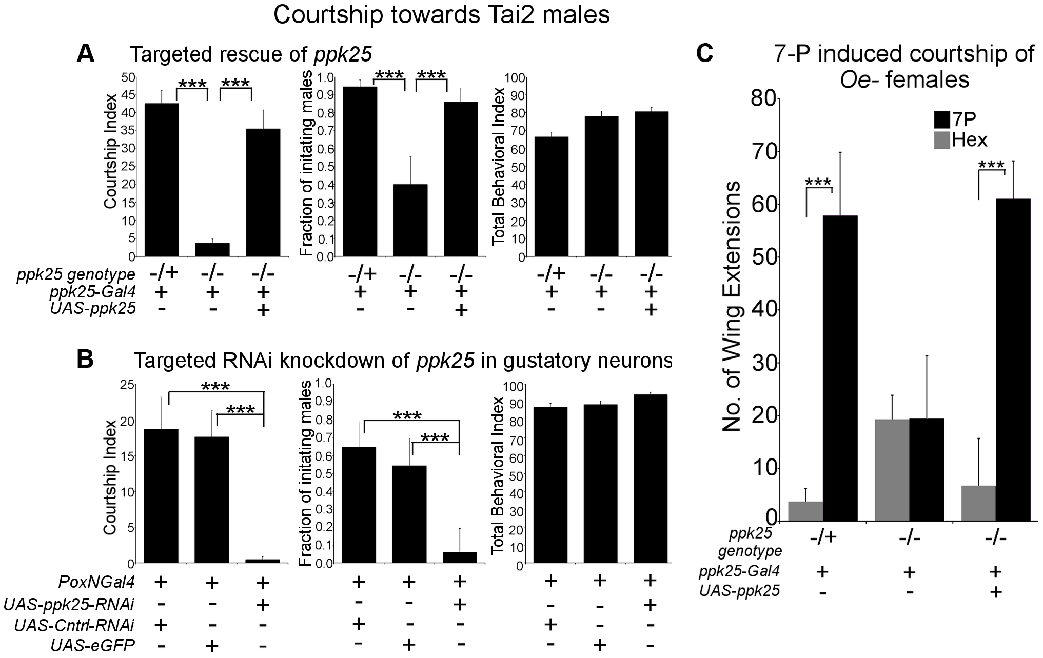<i>ppk25</i> function in gustatory neurons is required for courtship stimulation by <i>Tai2</i> males or 7-pentacosene.