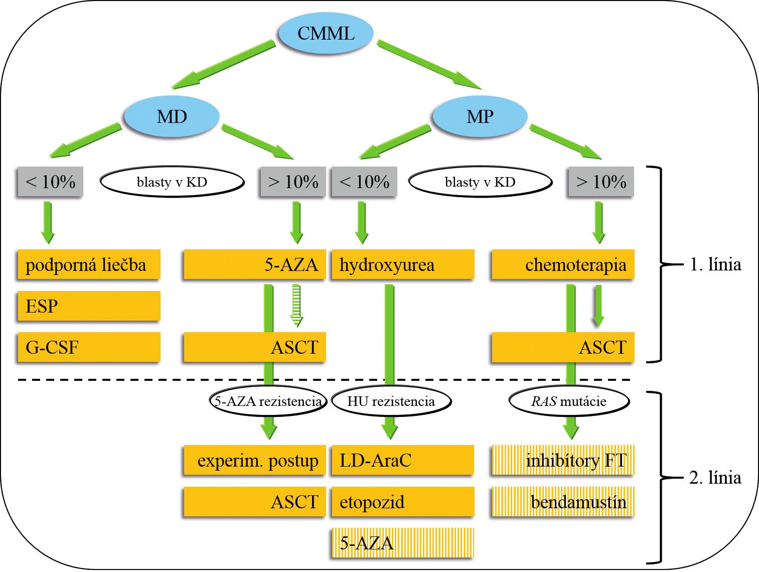 Návrh liečby CMML.