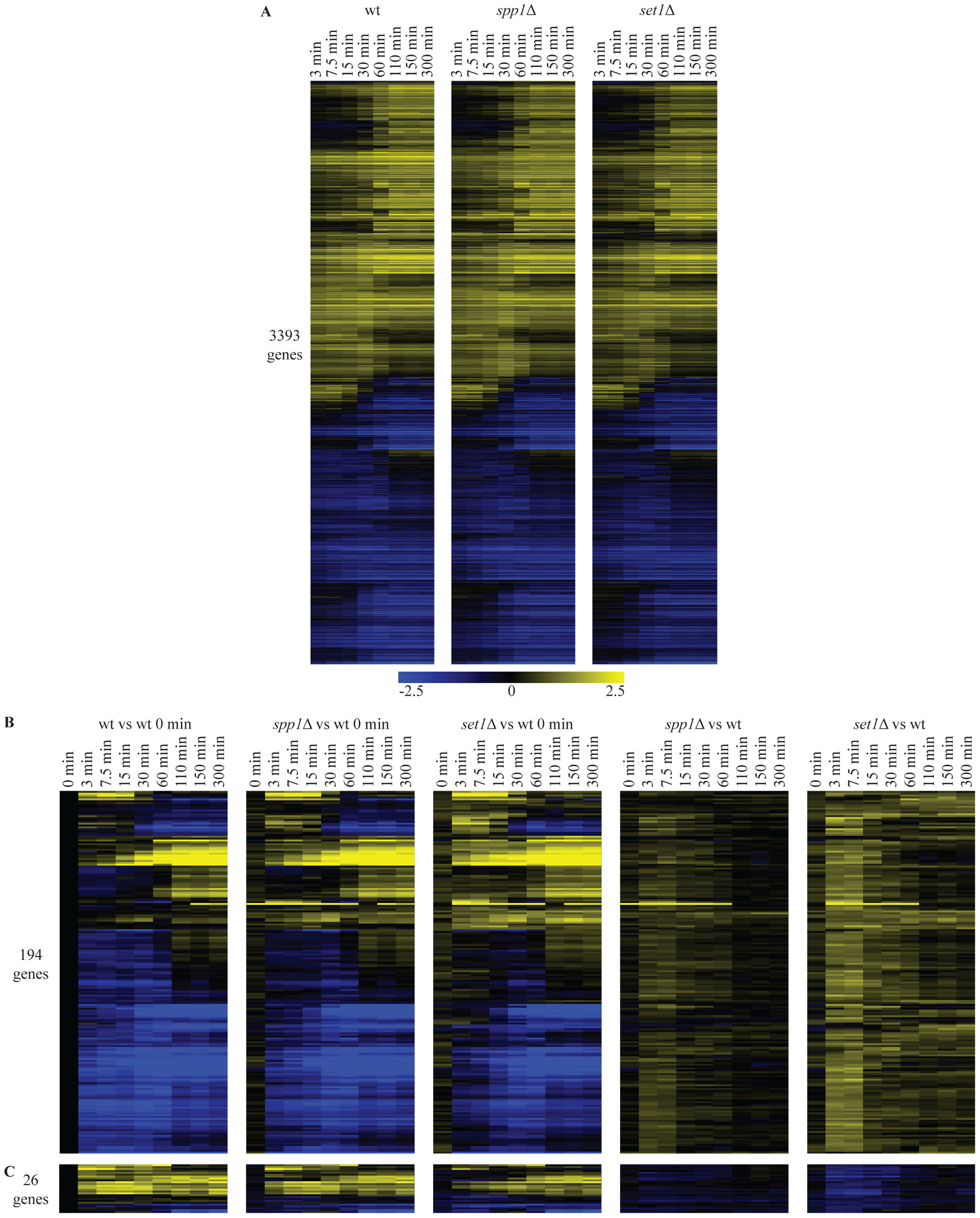 Loss of H3K4 di- and trimethylation leads to a delay in repression kinetics for a subset of genes.
