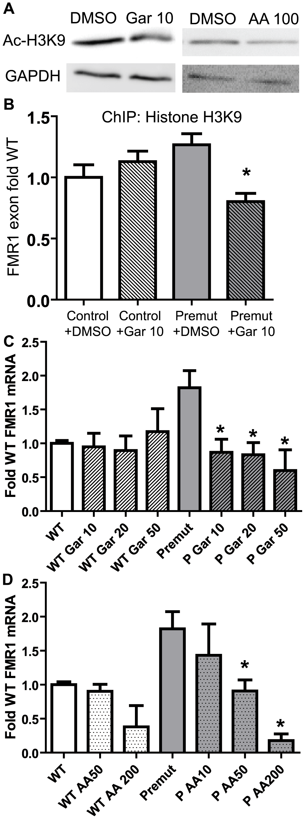 Correction of elevated FMR1 mRNA expression by treatment with histone acetyltransferase inhibitors.