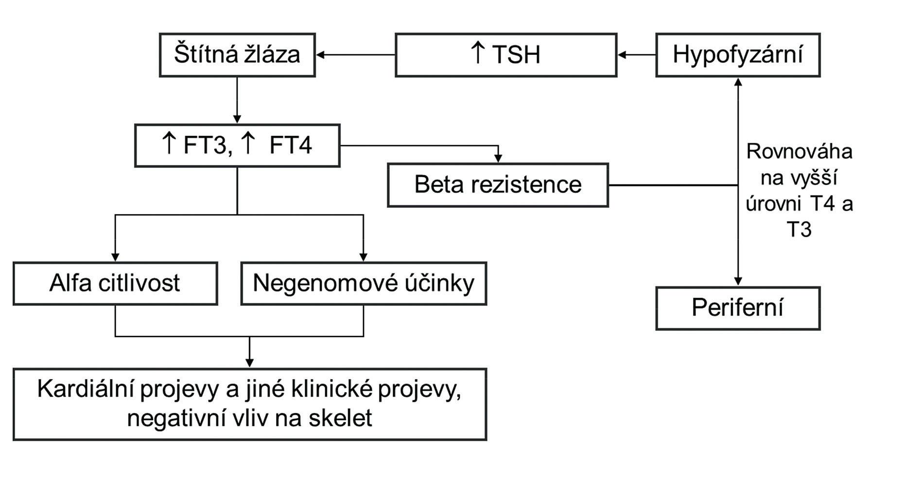 Patogenetické schéma syndromu rezistence na tyreoidální hormony TSH – tyreoidální stimulační hormon, FT3 – volný trijodtyroninu, FT4 – volný tyroxin, T4 – tyroxin, T3 – trijodtyronin