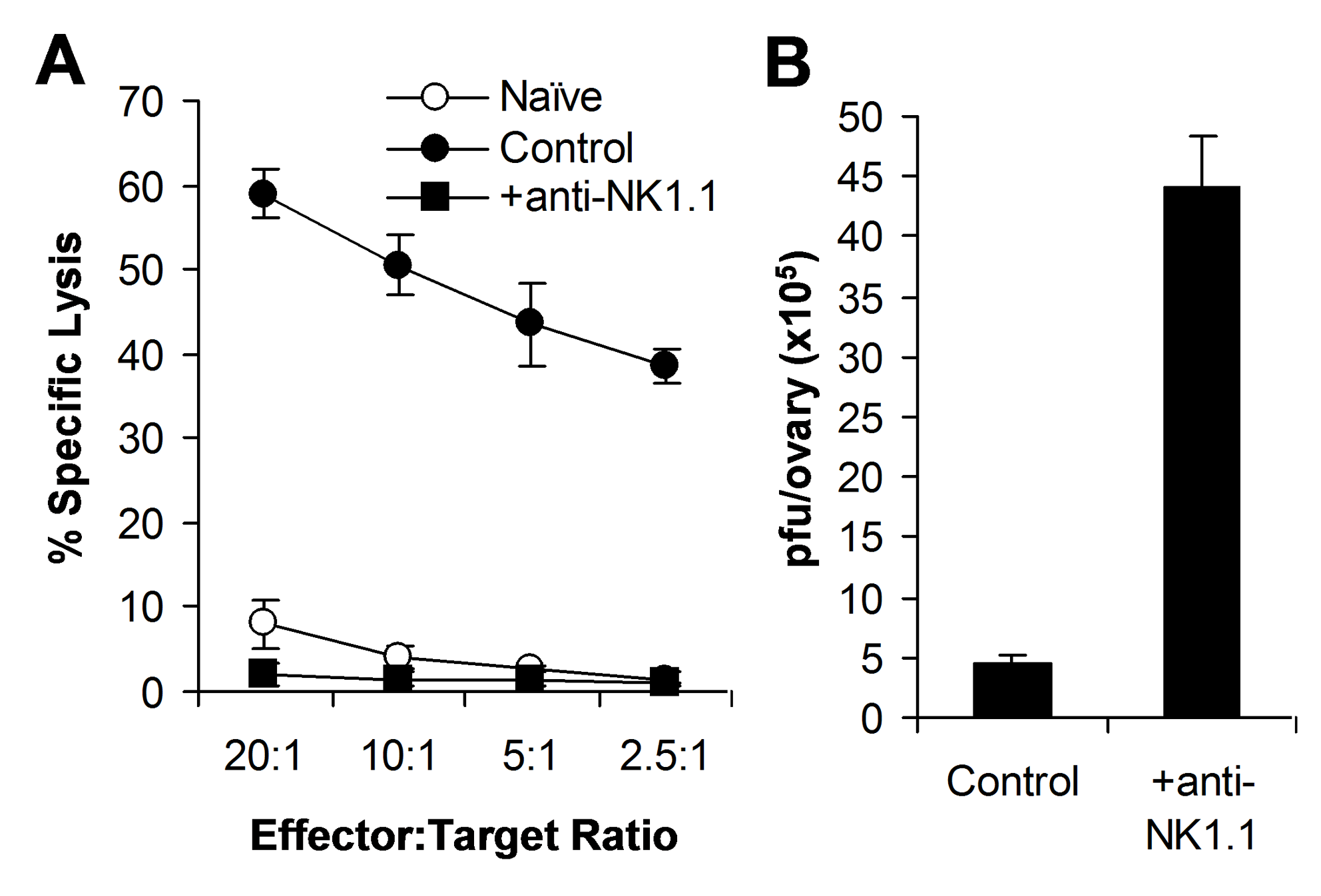 NK cells are required for the control of VV infection in vivo.