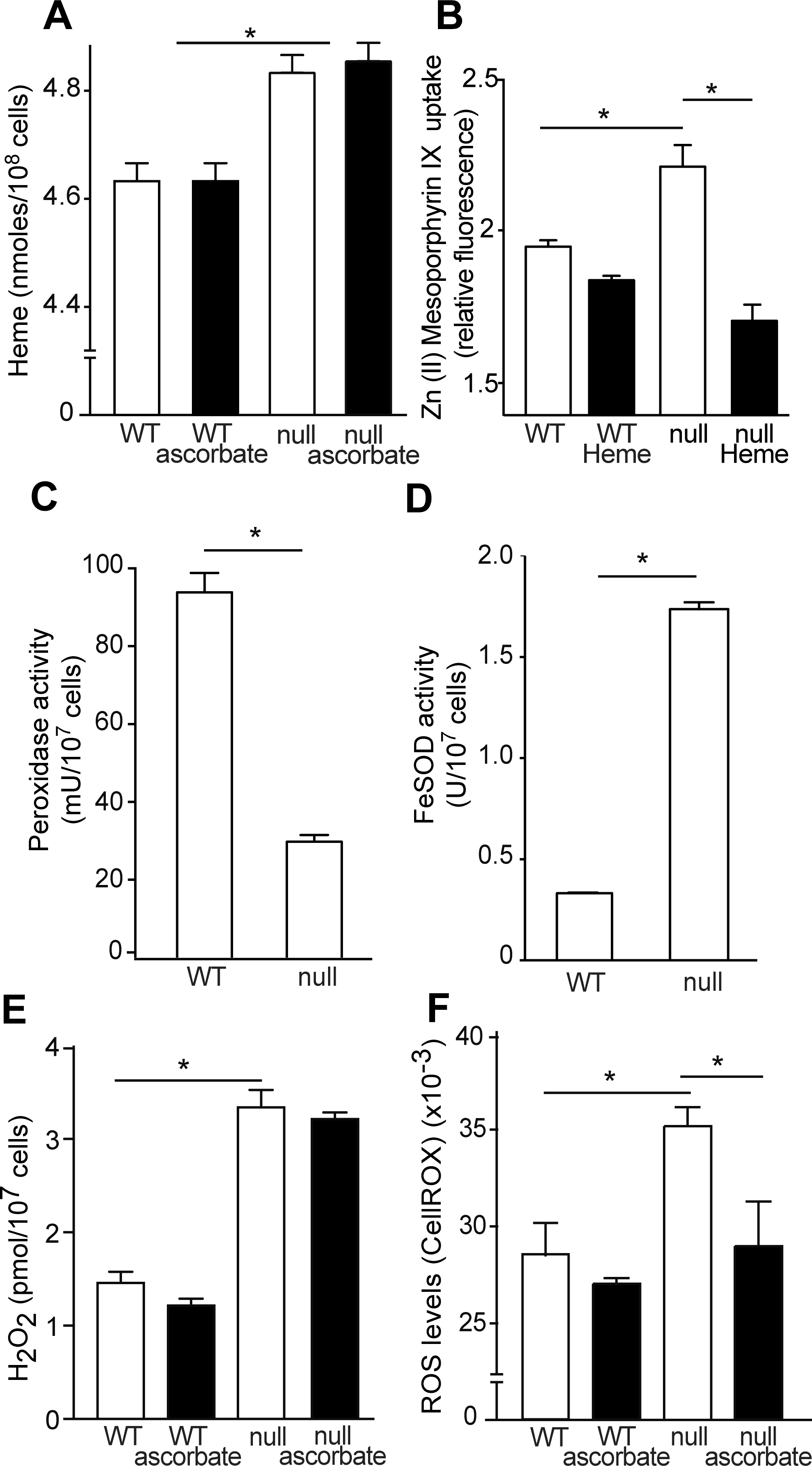 TcK2 null parasites incorporate more heme than WT cells, resulting in increased H<sub>2</sub>O<sub>2</sub> and ROS levels.