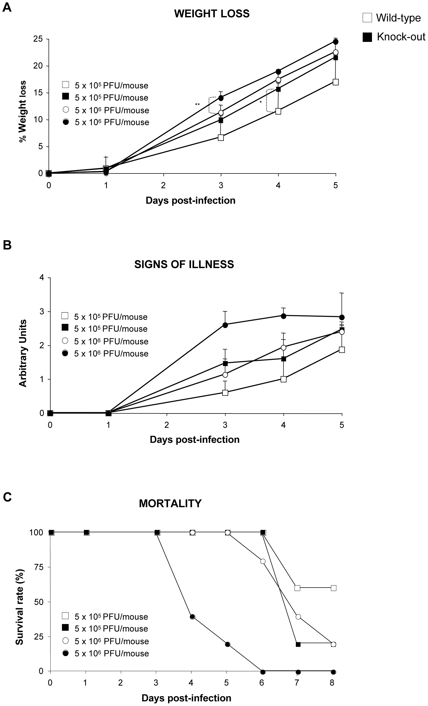 DUSP1 KO mice are more susceptible to WR infection than WT mice.