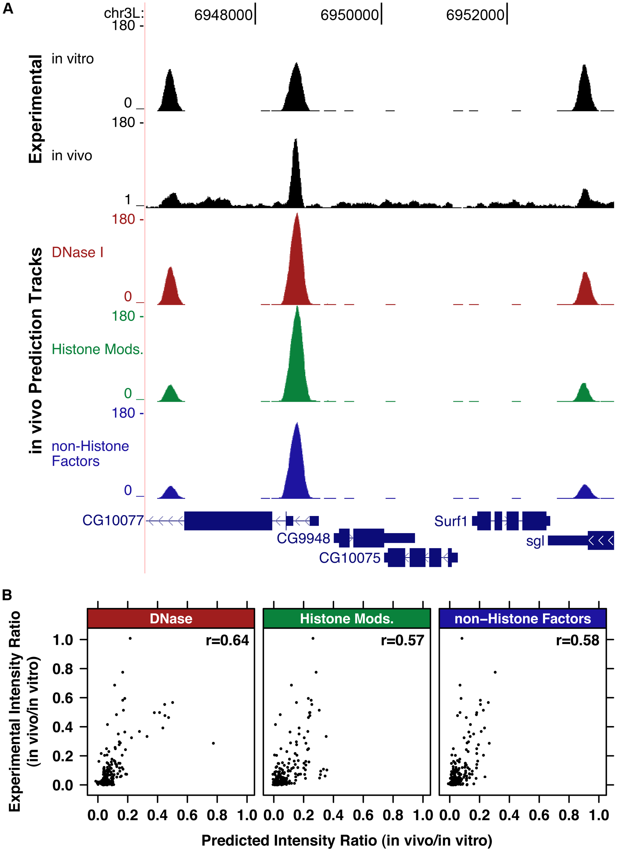 Genomic chromatin and PB–seq data accurately predict in vivo HSF binding intensity.