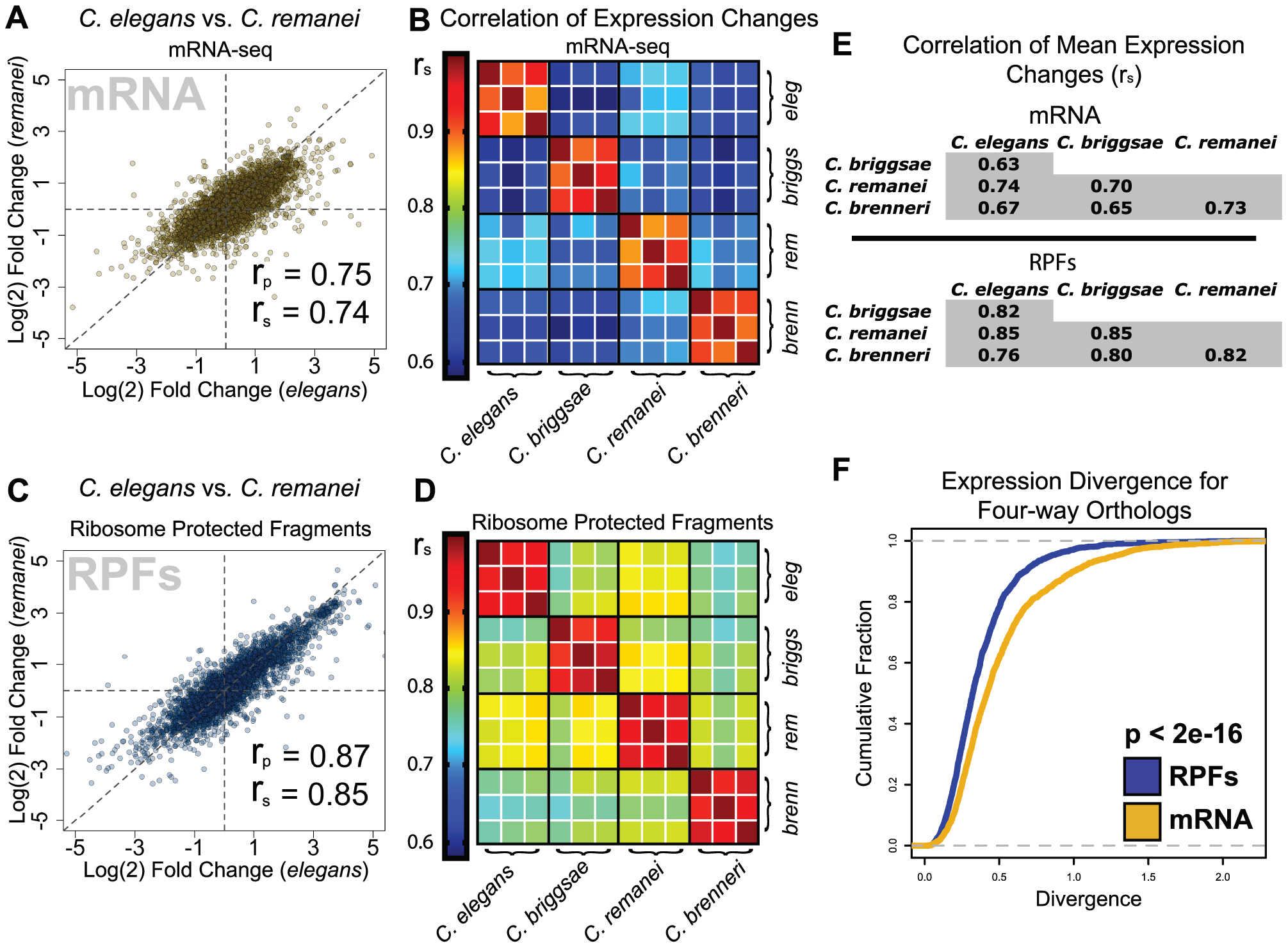 Translatome changes are more similar between species than transcriptome changes.
