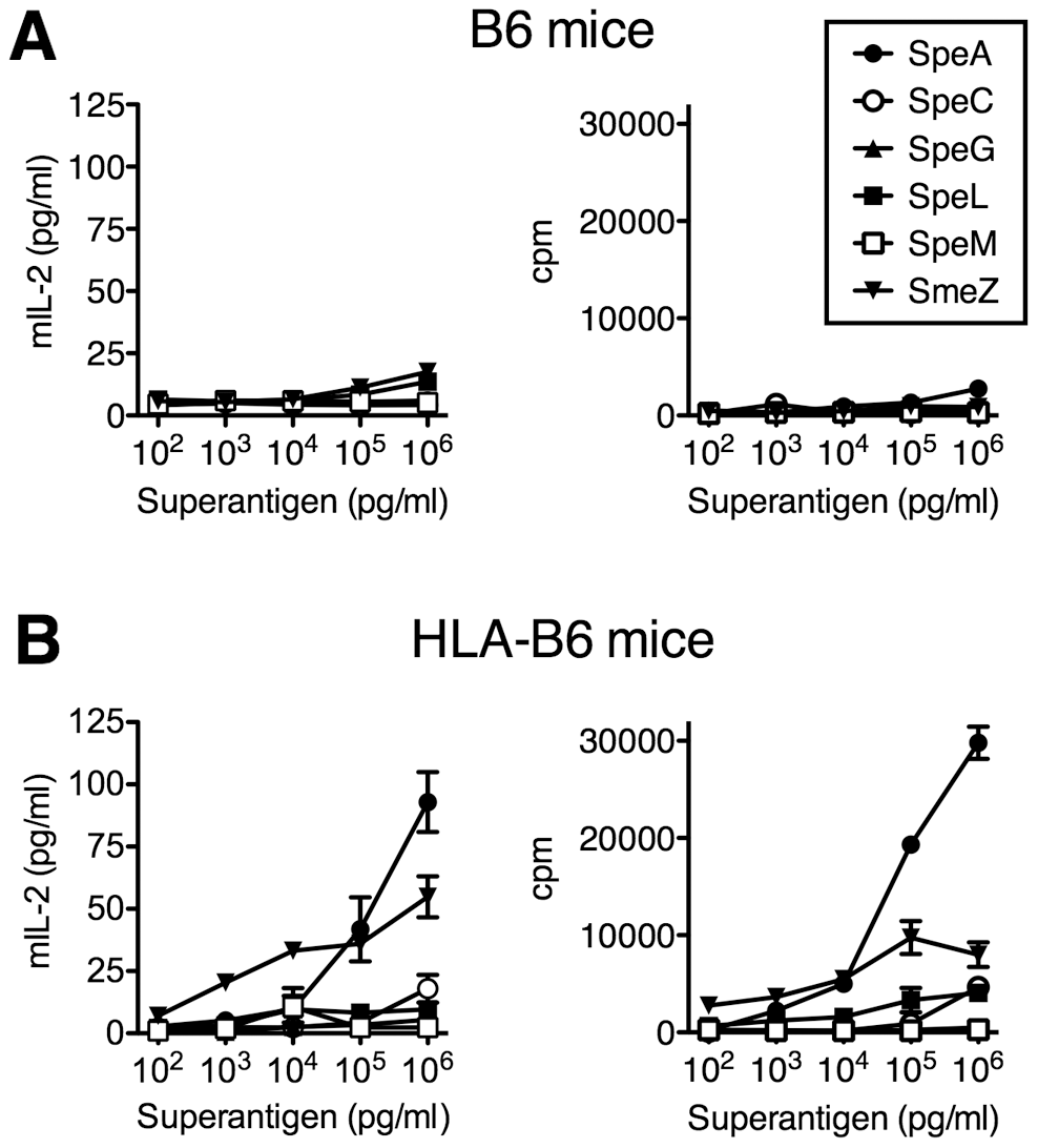 HLA-B6 mice are responsive to SpeA and SmeZ.