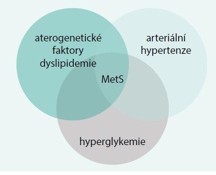 Patogenetické faktory metabolického syndromu
