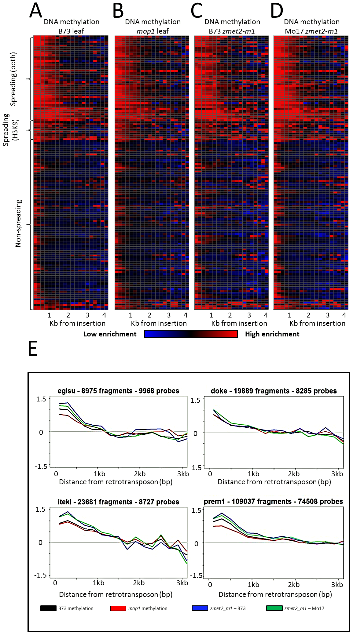 DNA methylation enrichment near retrotransposons is not affected by mop1 or zmet2-m1 mutations.