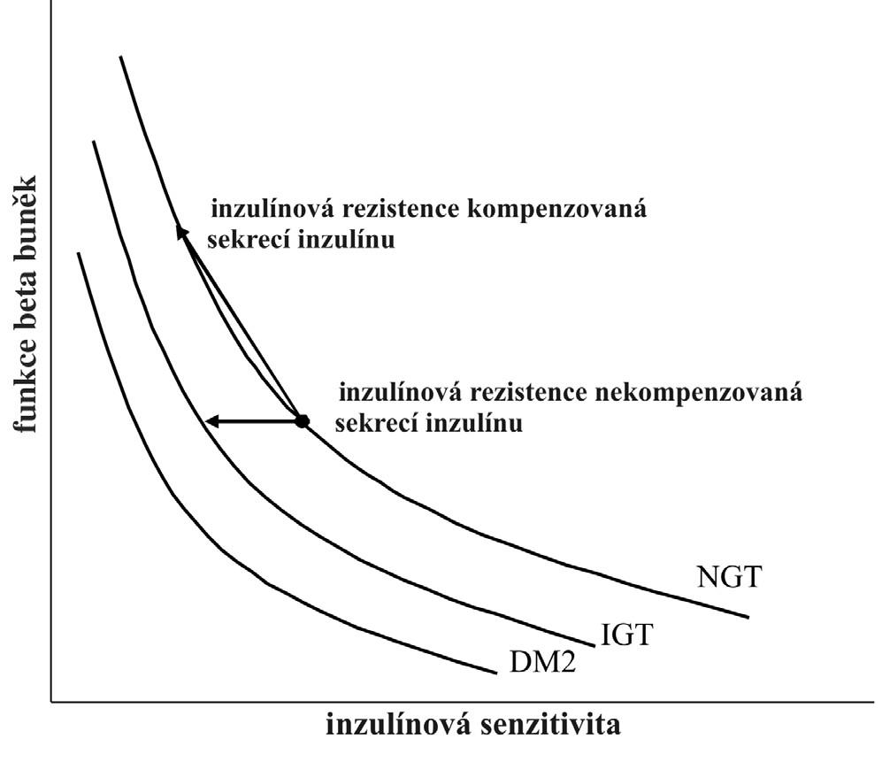 Hyperbolický vztah mezi inzulínovou sekrecí a inzulínovou senzitivitou, označovaný jako dispoziční index DM2 – diabetes mellitus 2. typu, IGT – porušená glukózová tolerance, NGT – normální glukózová tolerance
