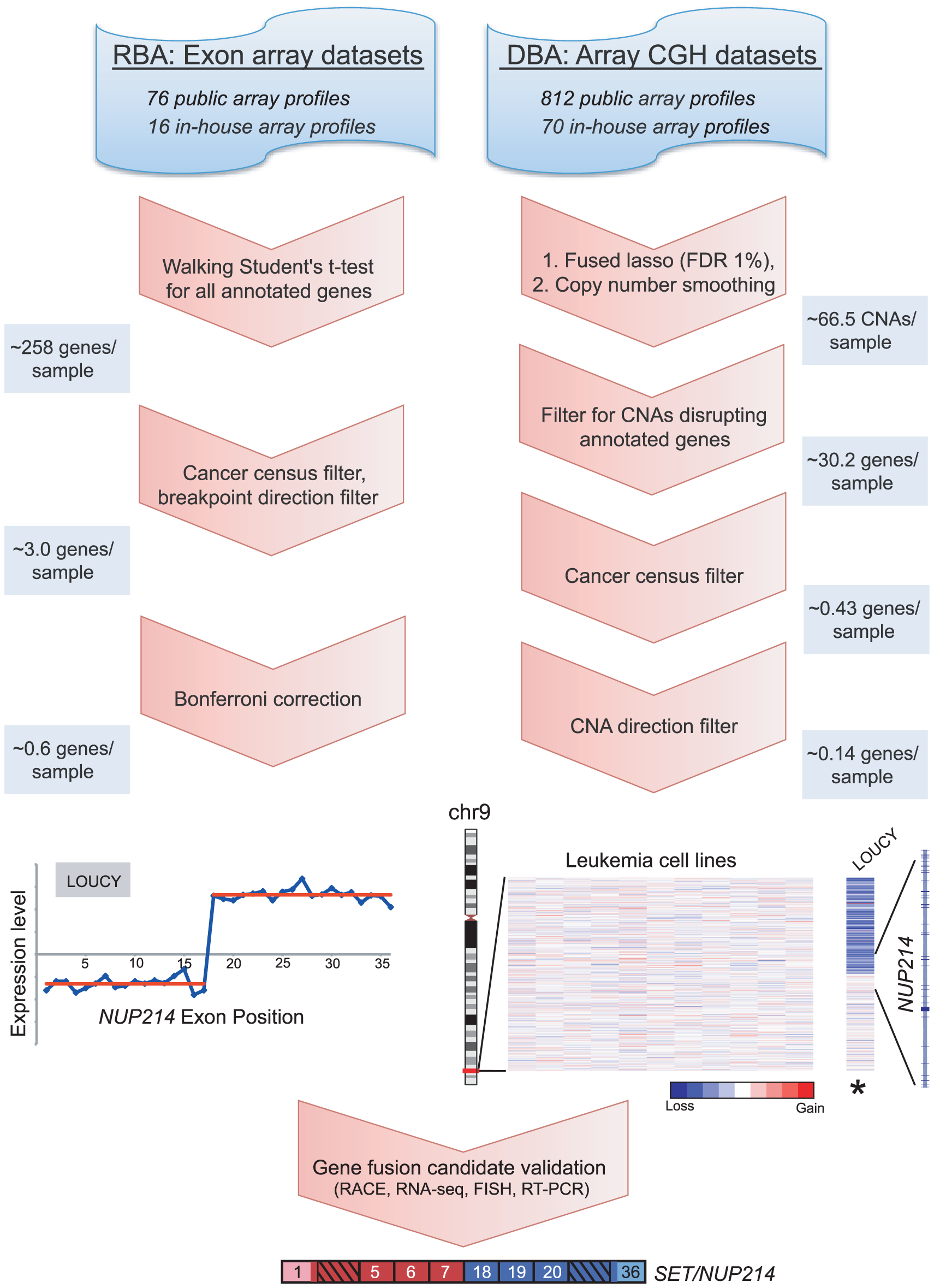 Breakpoint analysis for discovering novel cancer gene rearrangements.
