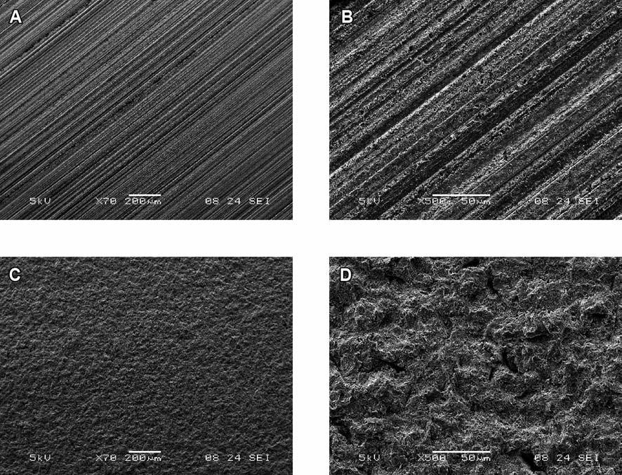 Povrchová morfologie substrátů po opracování brusným papírem a air abrazí: A – broušený povrch (zvětšení 70×), B – broušený povrch (zvětšení 500×), C – air abradovaný povrch (zvětšení 70×), D – air abradovaný povrch (zvětšení 500×)