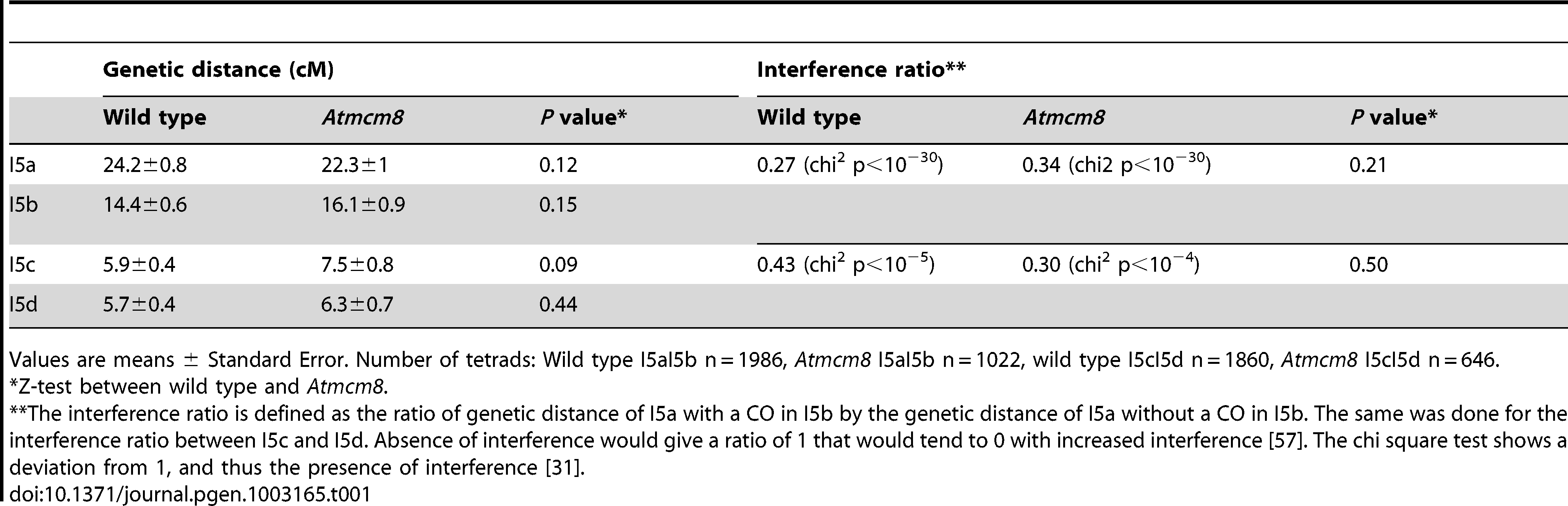 Genetic distances and interference in <i>Atmcm8</i> using FTLs.