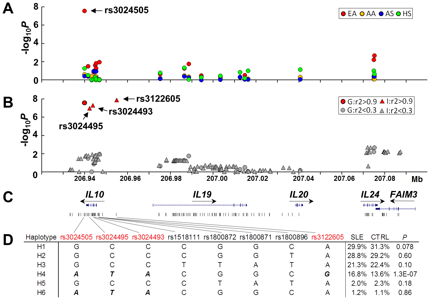 SNPs of the <i>IL10</i> gene cluster associated with SLE in European Americans.