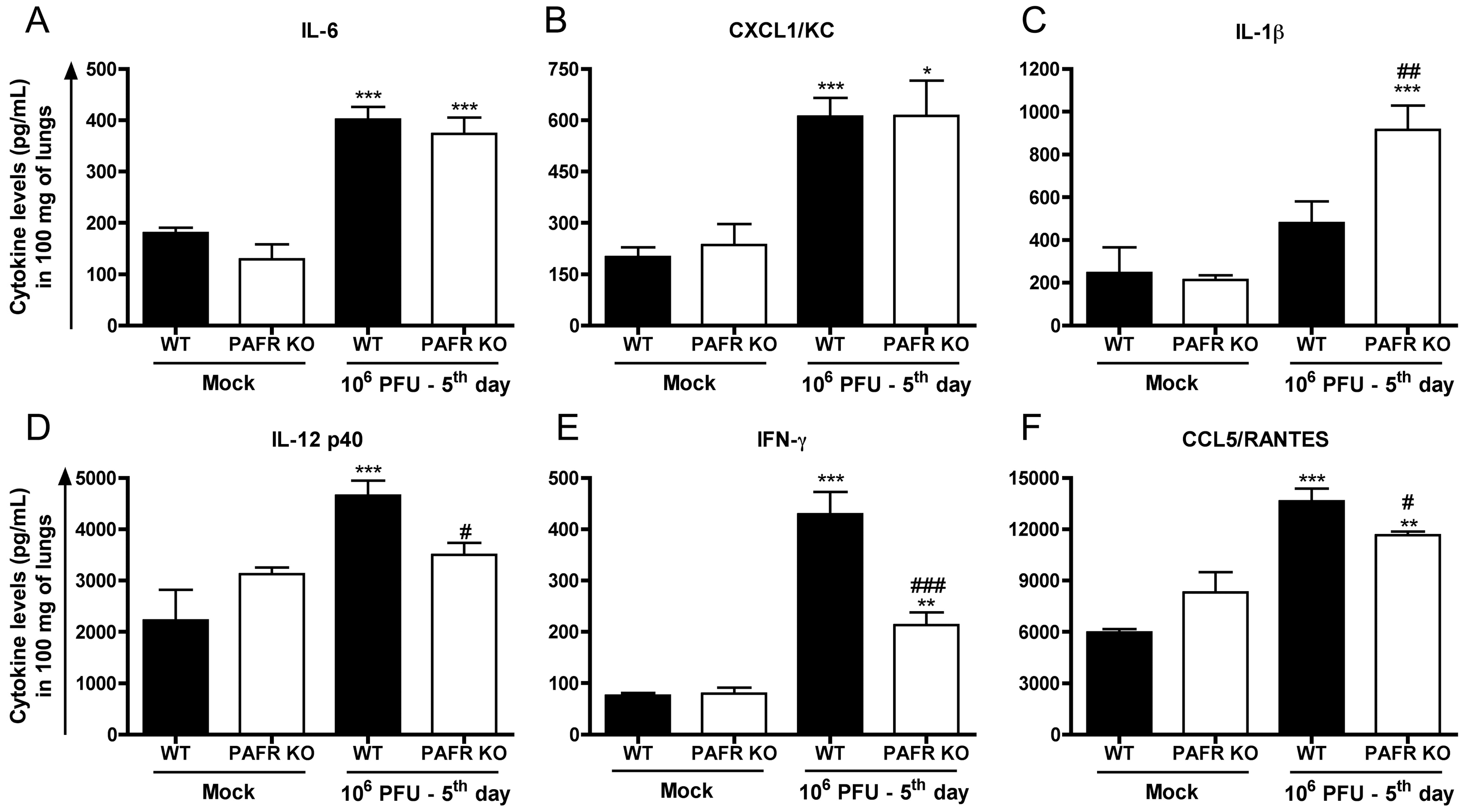 Cytokines and chemokines in lungs following Influenza A/WSN/33 H1N1 infection of WT and PAFR-deficient mice.