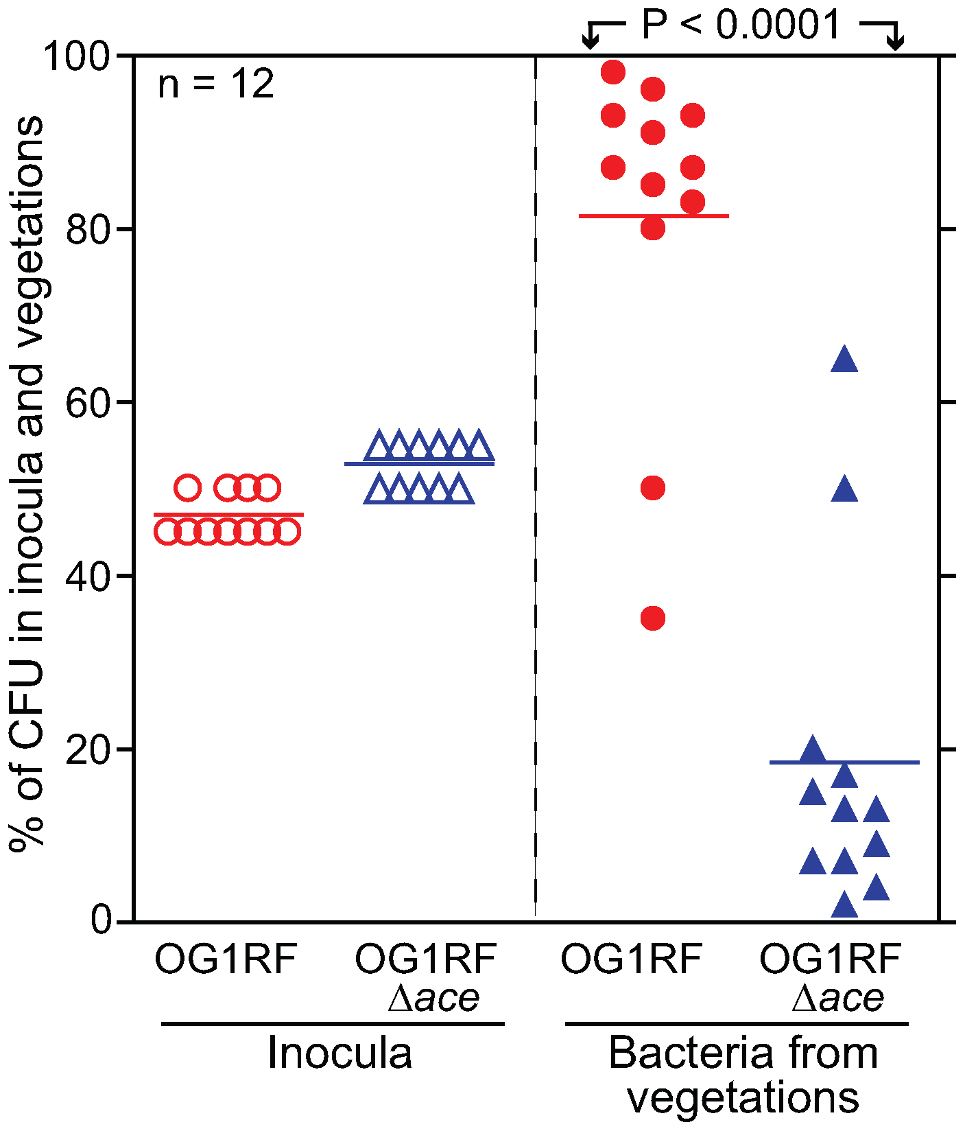 <i>E. faecalis</i> OG1RF and OG1RFΔ<i>ace</i> (TX5467) in a competition (mixed infection) assay in the rat endocarditis model.