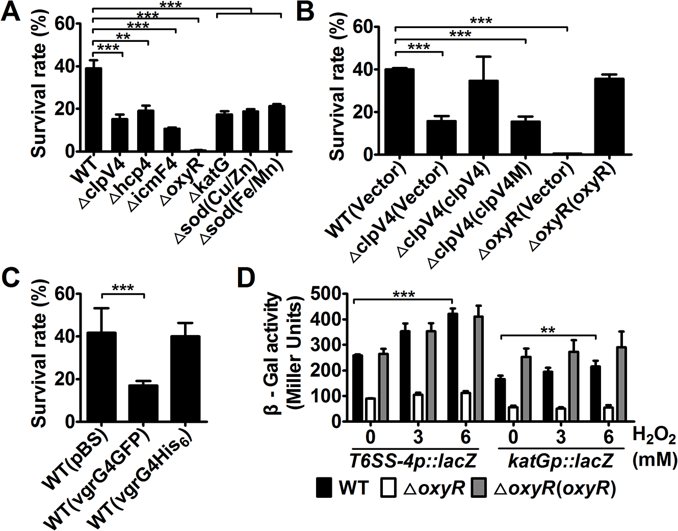 T6SS-4 is essential for <i>Yptb</i> survival under oxidative stress.