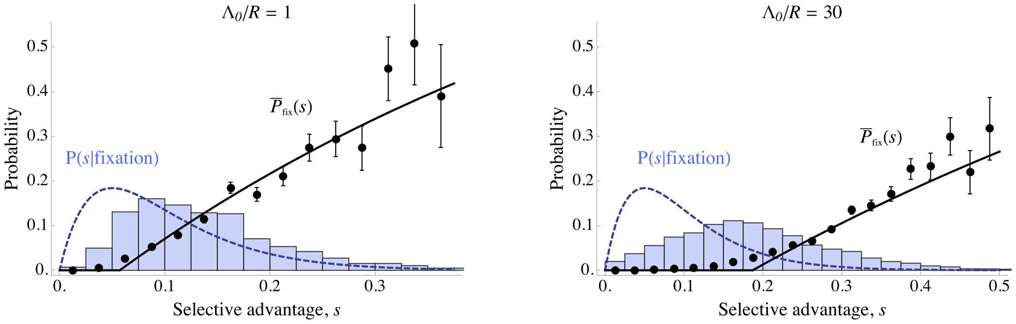 Effect of interference on distribution of successful mutations.