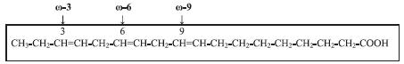 Rozdělení polynenasycených mastných kyselin podle polohy první dvojné vazby