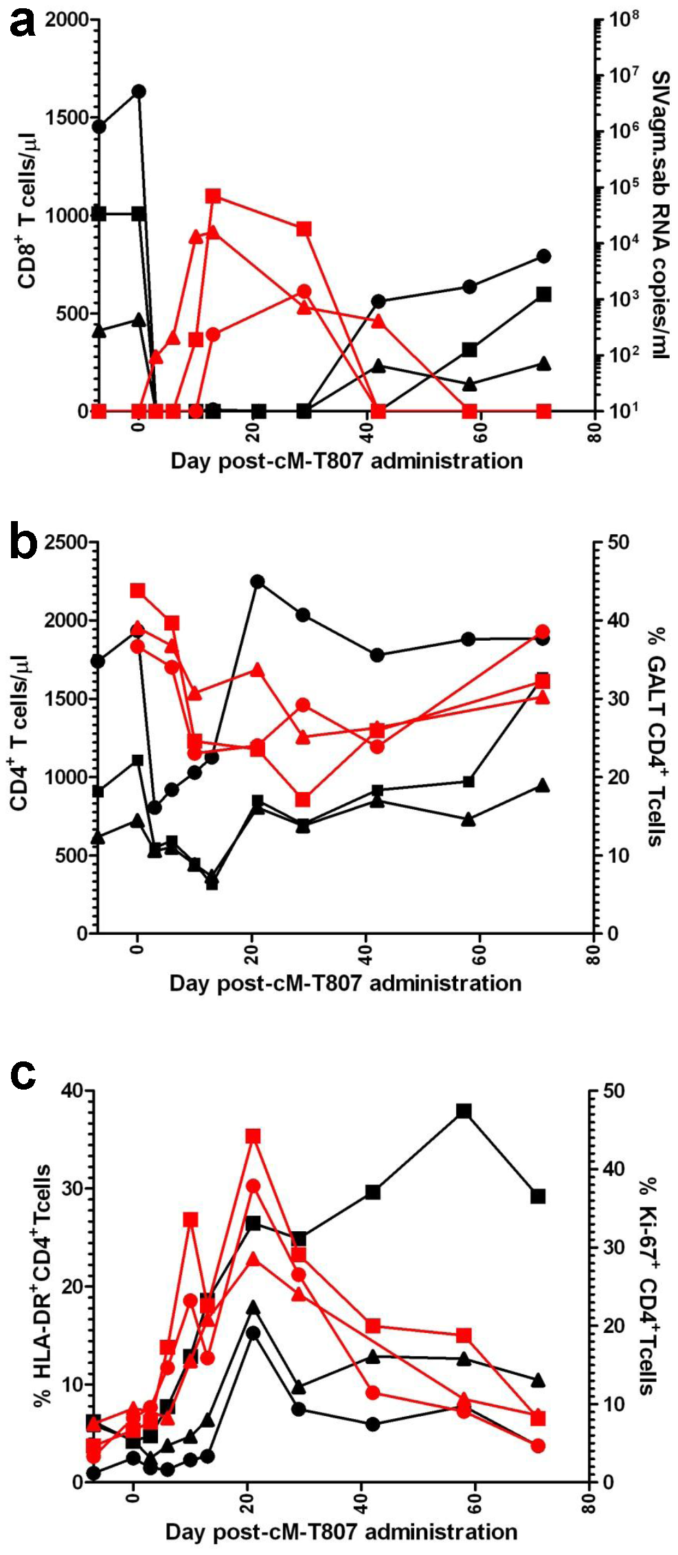 Administration of cM-T807 depleting antibody resulted in a rebound of plasma VLs in all three SIVagm-infected RMs.