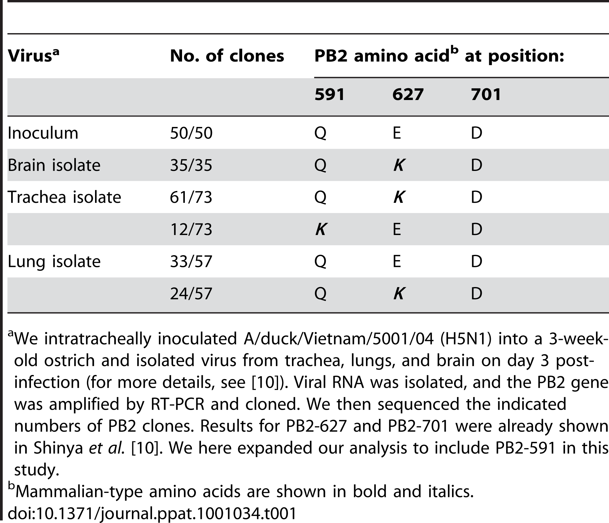 Mammalian-type amino acids in the PB2 protein of ostrich isolates.