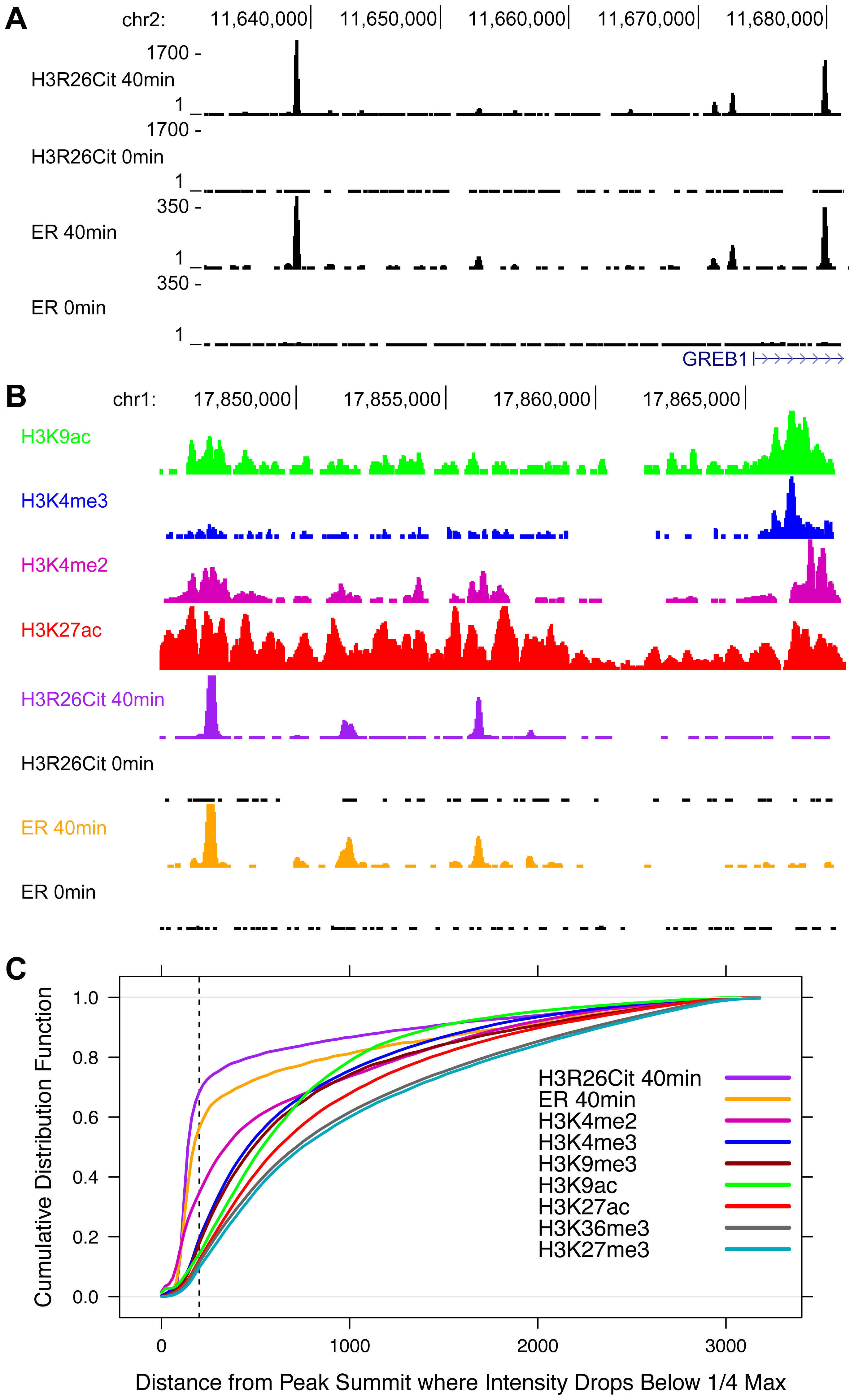 The genomic profile of H3R26Cit is uniquely discrete compared to other histone modifications.