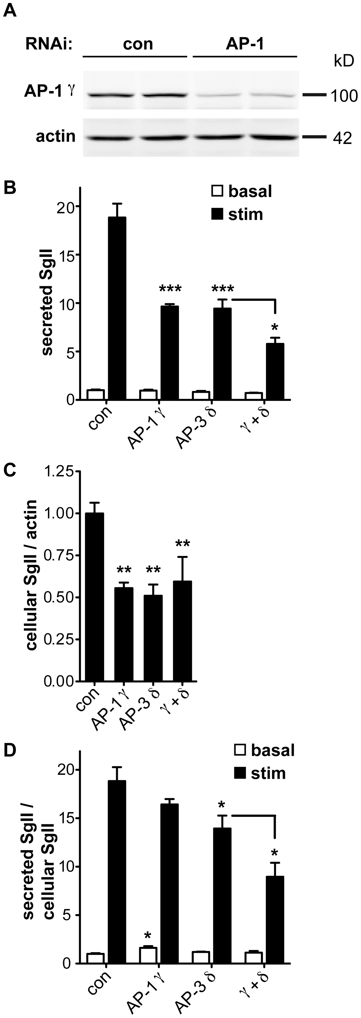 AP-1 knockdown potentiates the effect of AP-3 knockdown on regulated secretion.