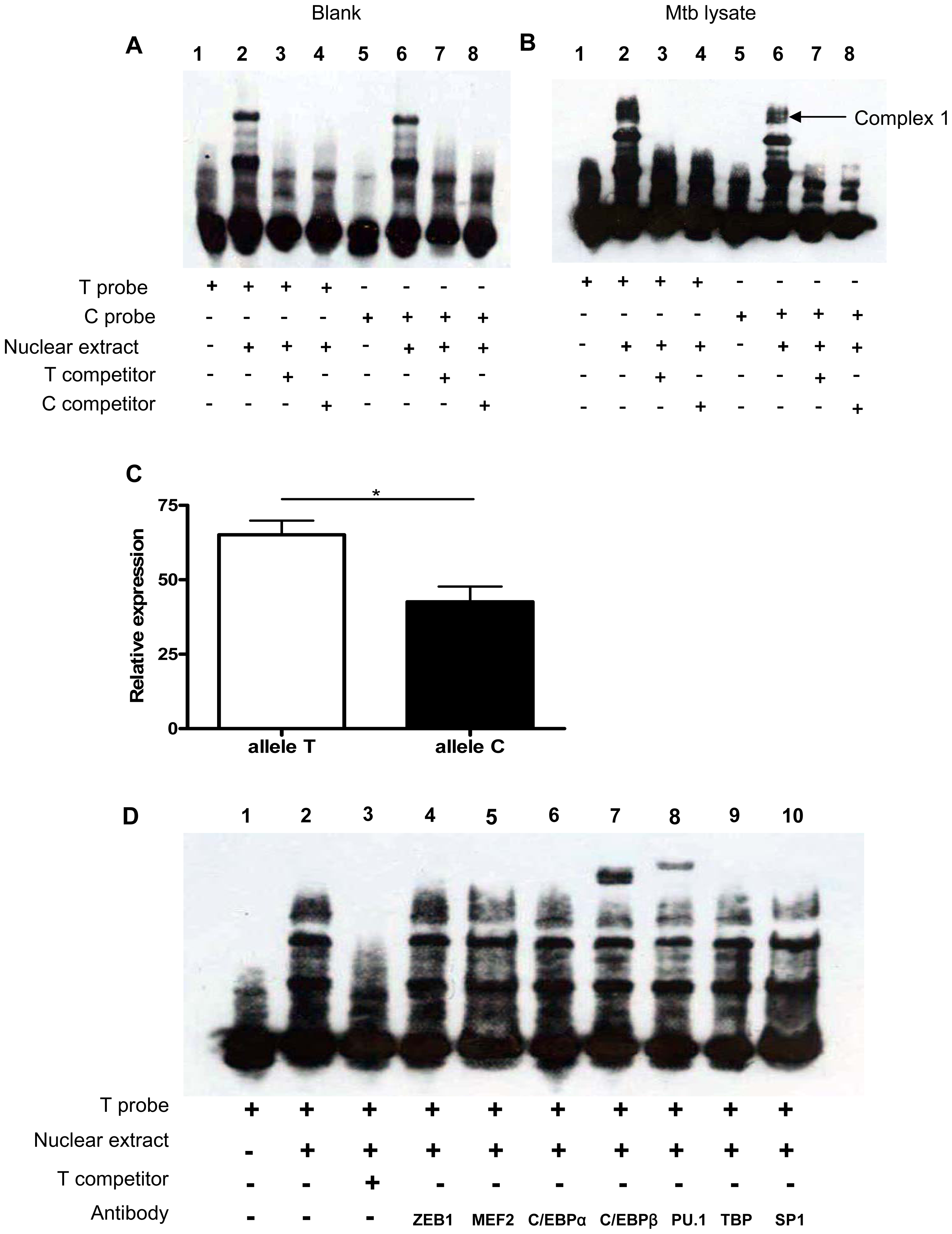 SNP rs1143627 variant affects C/EBPβ and PU.1 binding to the <i>IL1B</i> promoter.