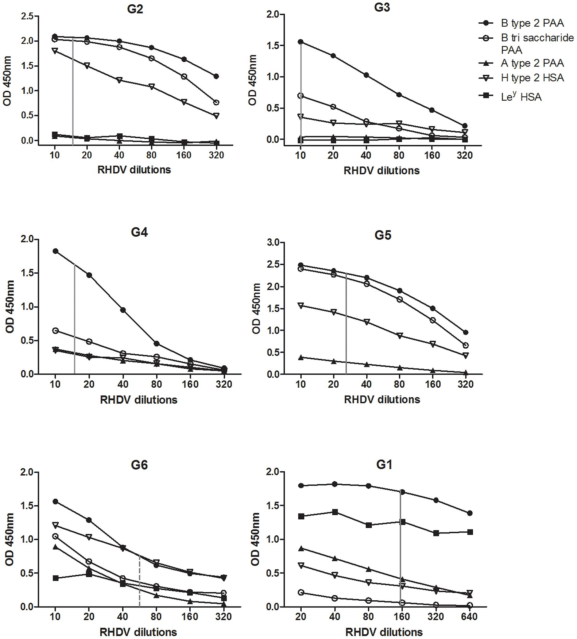 RHDV strains binding to synthetic oligosaccharides.