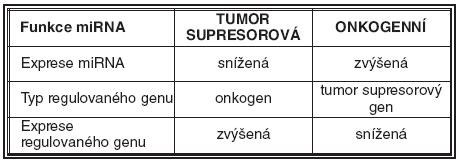 Přehled funkcí miRNA v tumorigenezi