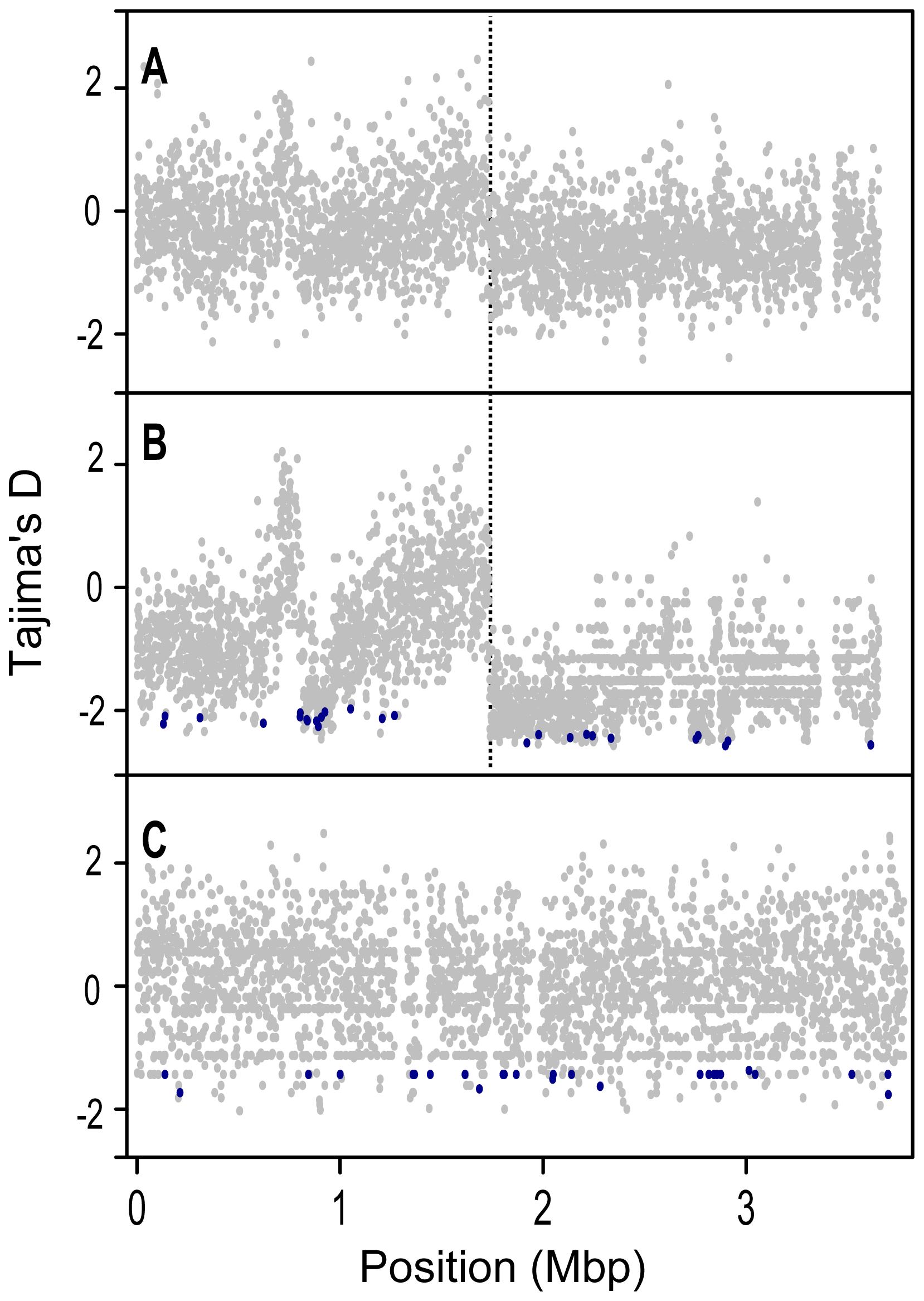Tajima's D (<i>D<sub>T</sub></i>) values for protein coding genes along the length of the chromosome.