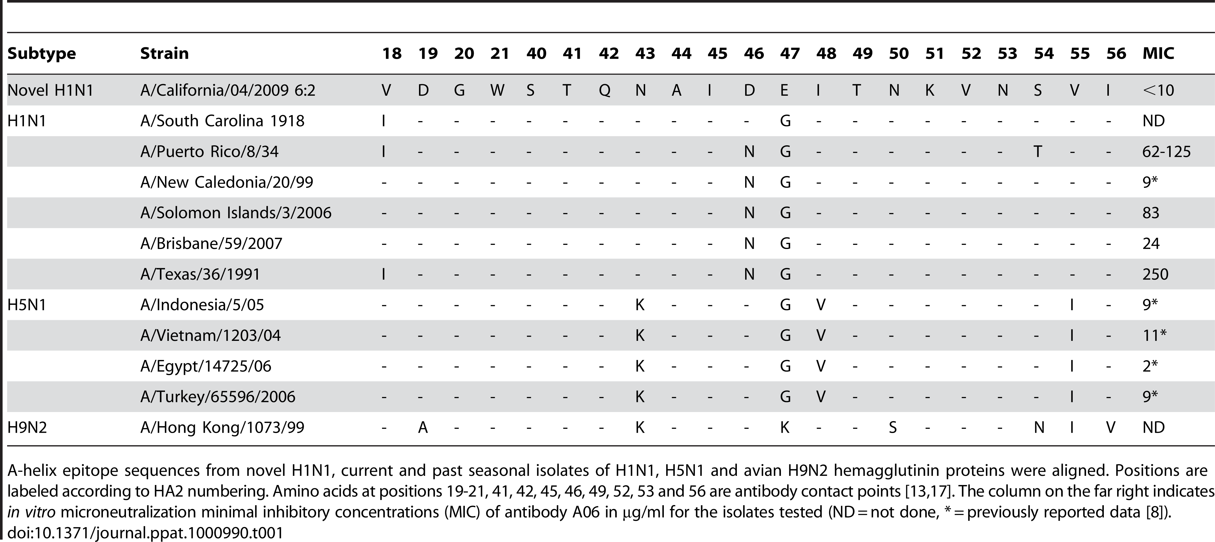 The A-helix epitope targeted by the A06 antibody is highly conserved across numerous types of influenza.