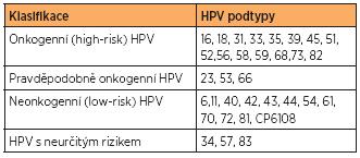 Rozdělení HPV podle míry onkogenního vlivu na vznik karcinomu cervixu [18]