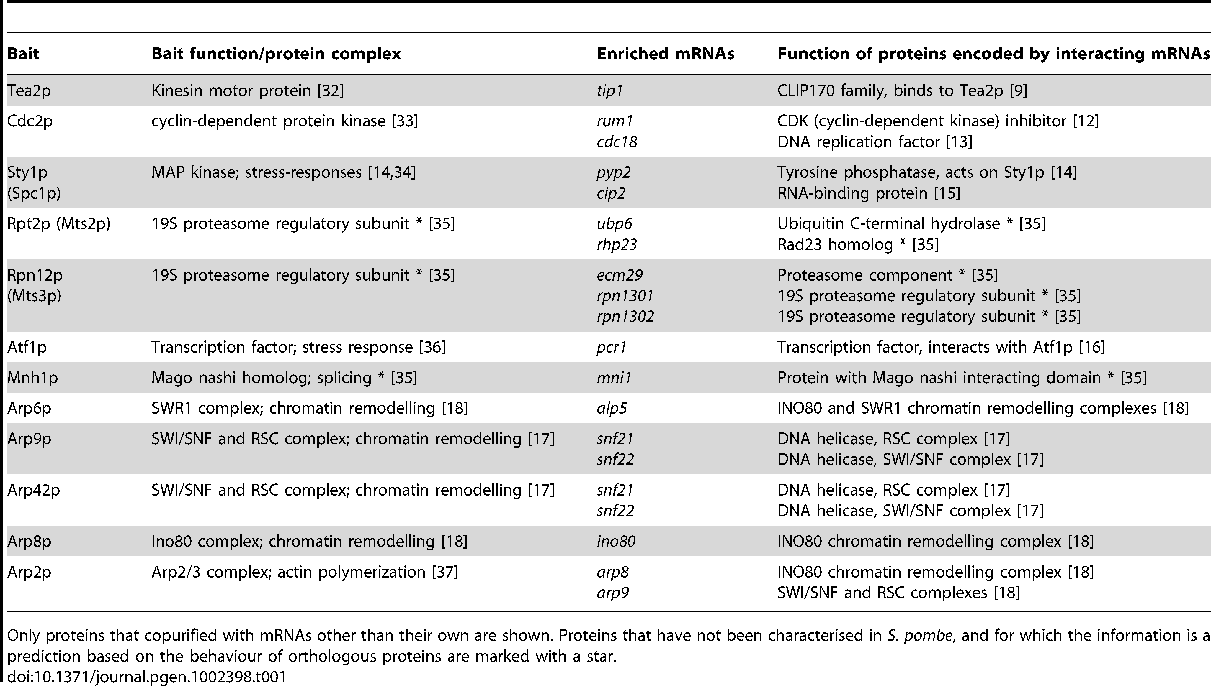 Proteins analysed by RIp-chip and mRNAs associated with them.