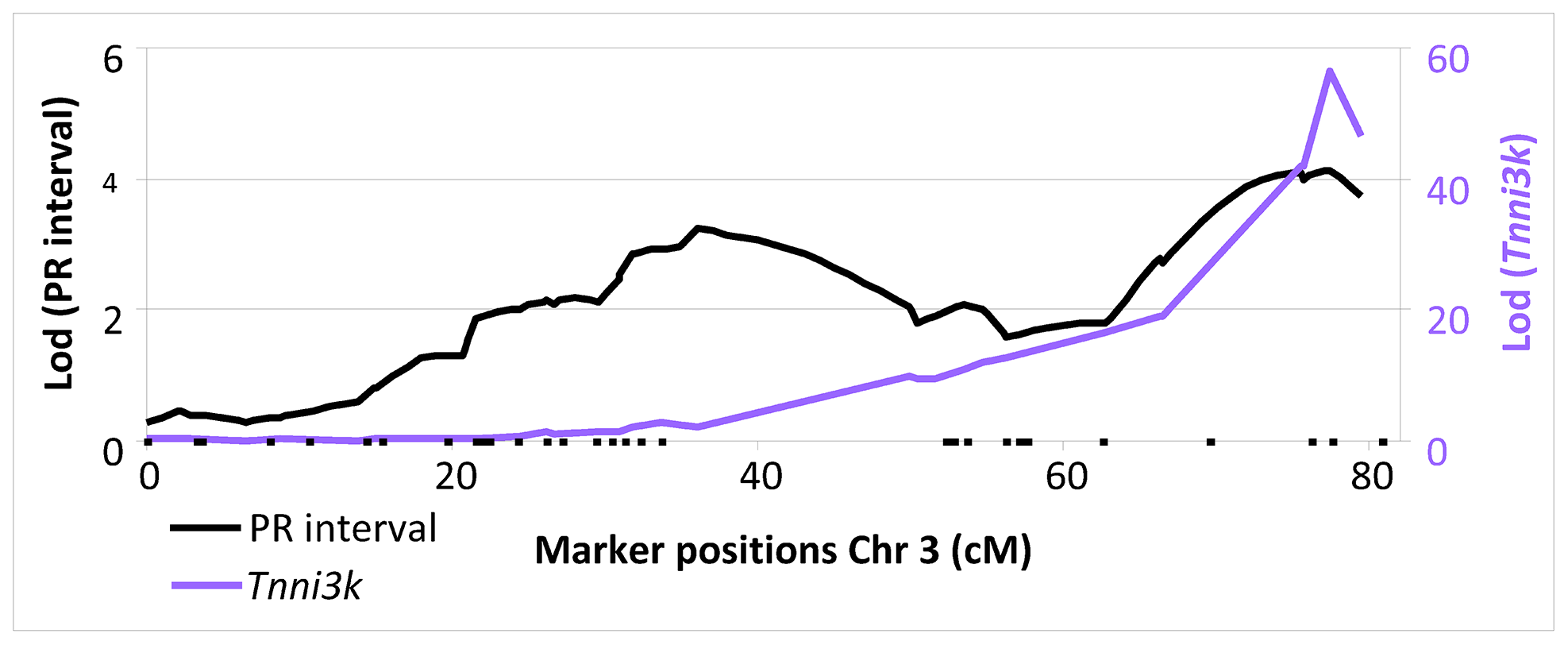 LOD plot of PR interval (black, left y-axis) and <i>Tnni3k (purple</i> right y-axis) on chromosome 3.