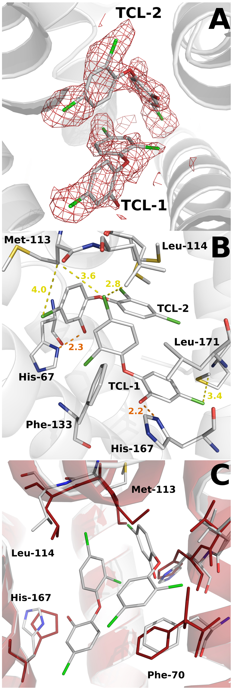 Structural details of the triclosan binding site.