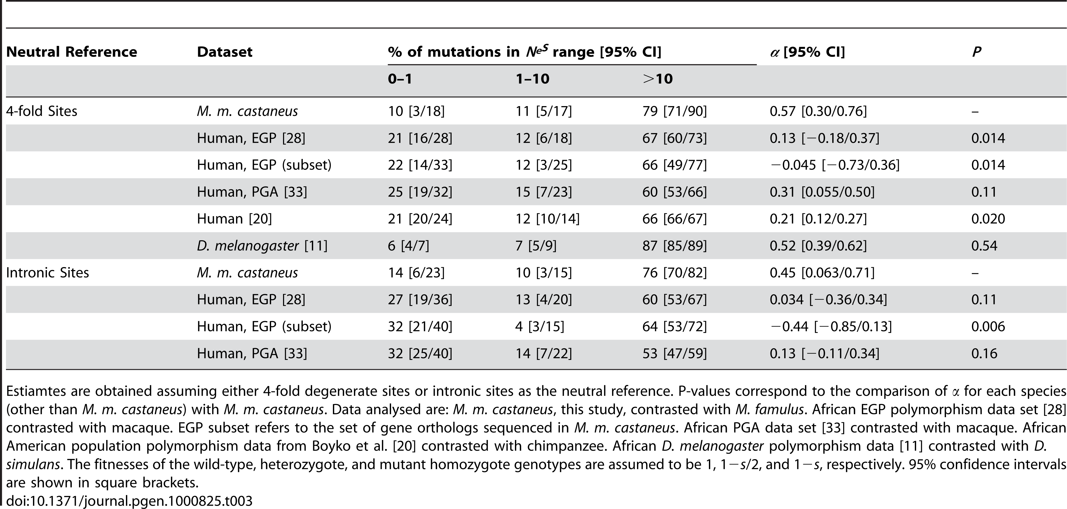 Estimated percentages of amino acid mutations in different <i>N<sub>e</sub>s</i> ranges and estimates of <i>α</i>, the fraction of substitutions driven to fixation by positive selection.