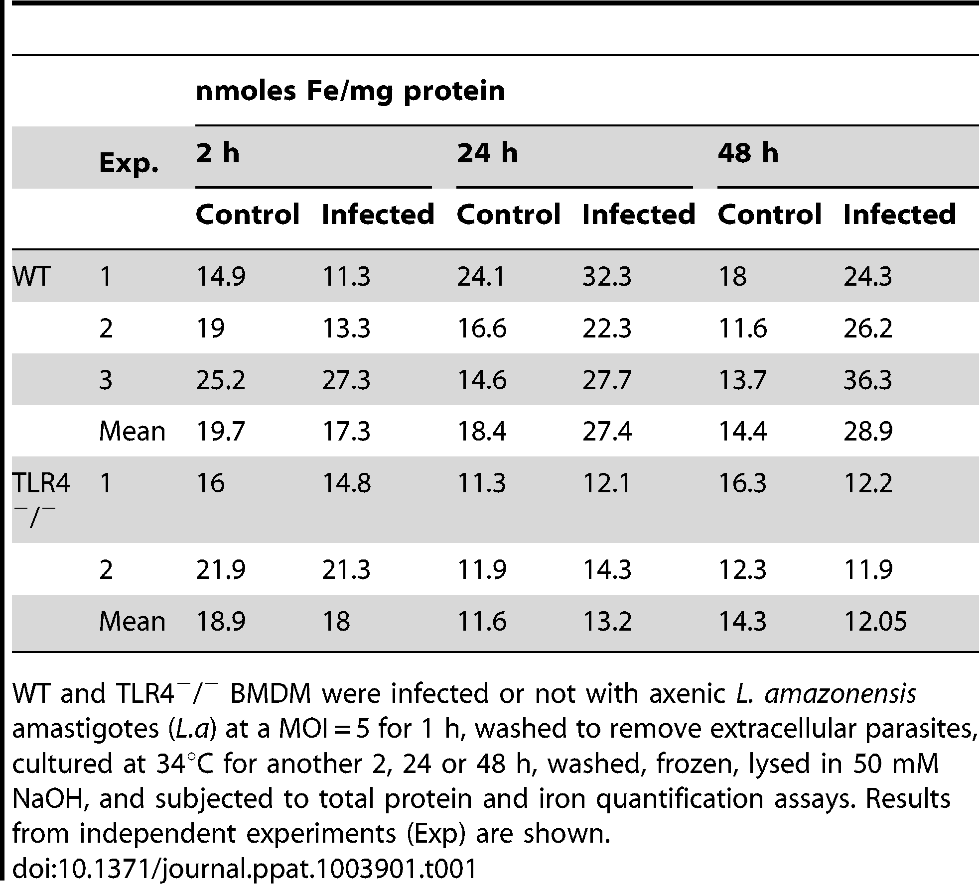 Effect of <i>L. amazonensis</i> infection on the total iron content of macrophages.