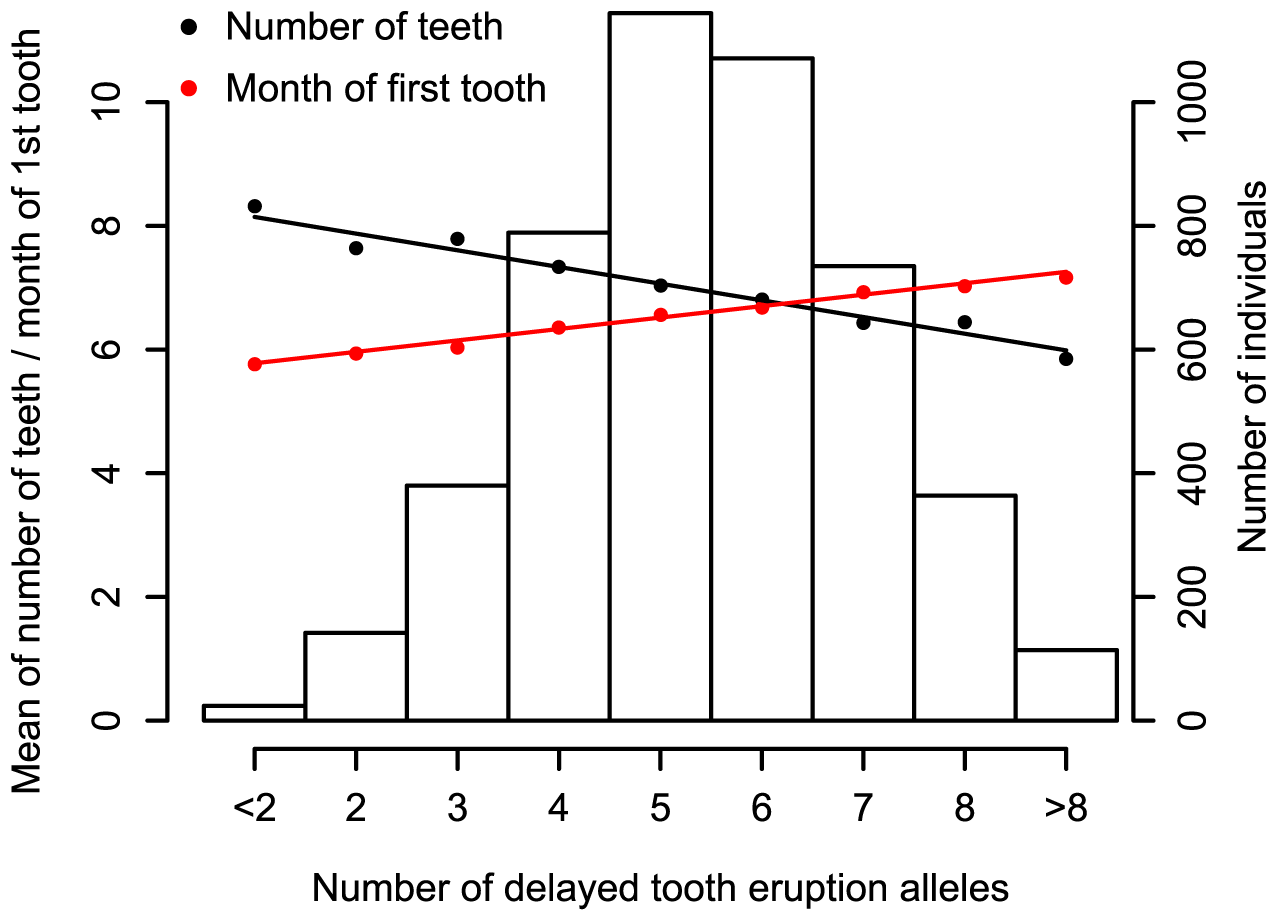 Meta-analysis for primary tooth development by genotype for the five SNPs attaining genome-wide significance.