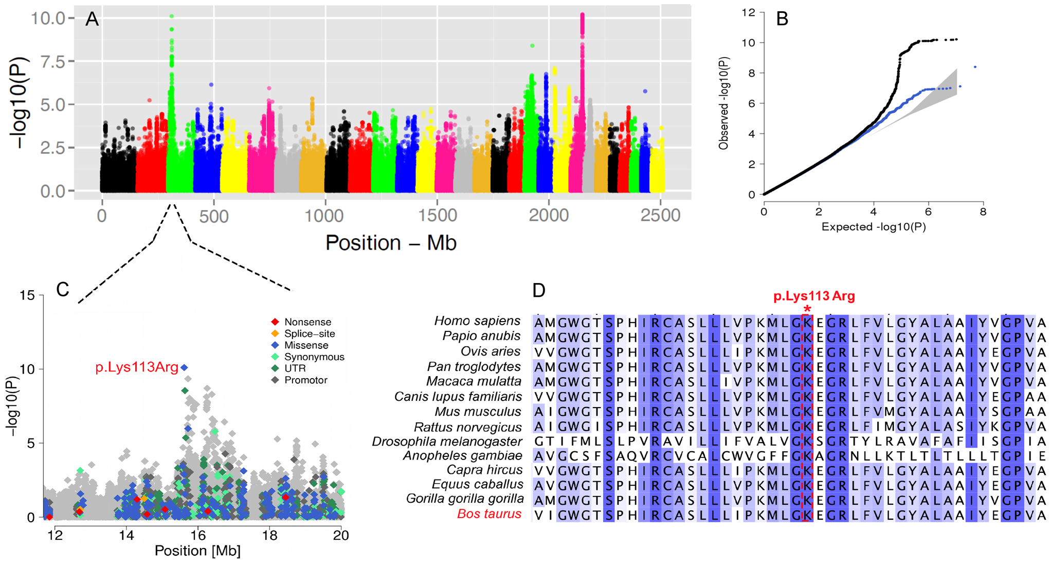 The visualization of the signals revealed by association analyses for SCC trait.