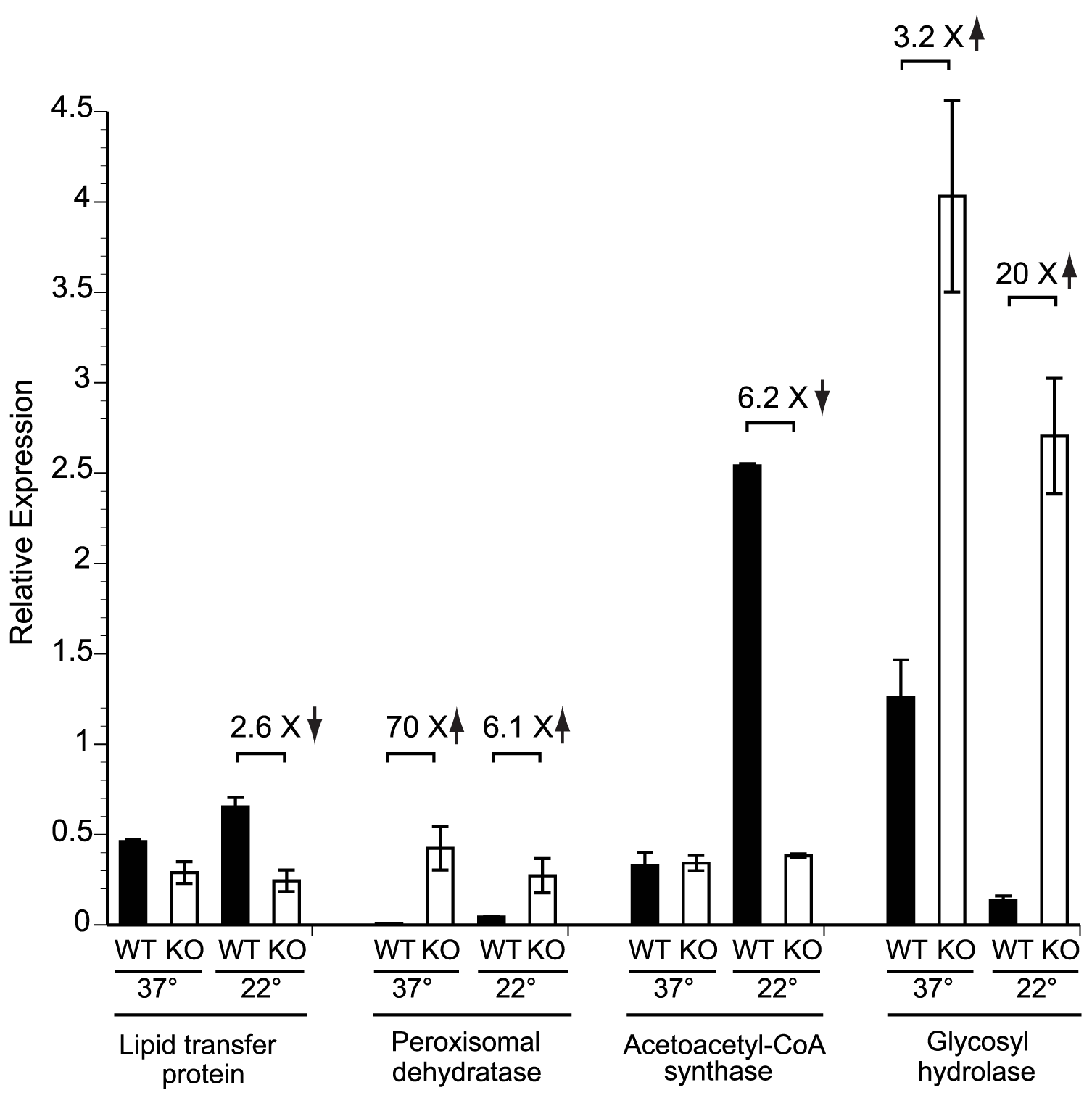 Expression of candidate genes in the <i>SREB</i> regulon at 37°C and 22°C.