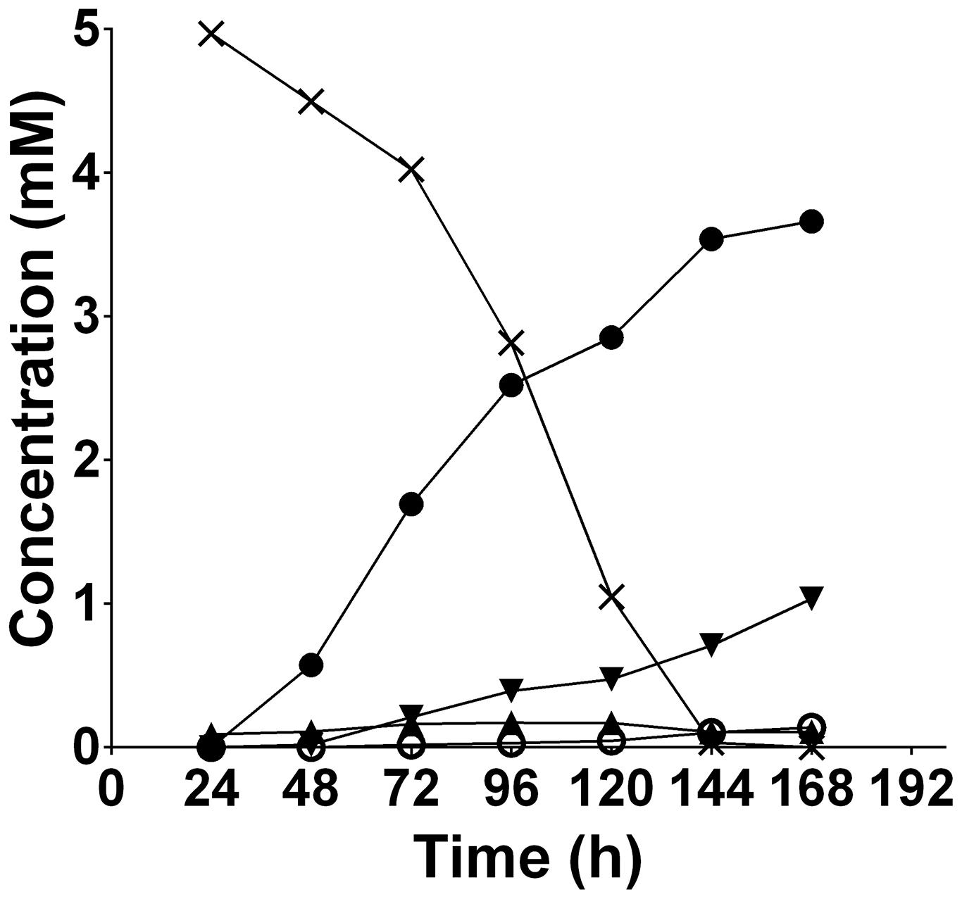 The extracellular products of <i>T. denticola</i> [U-<sup>13</sup>C]glycine fermentation.