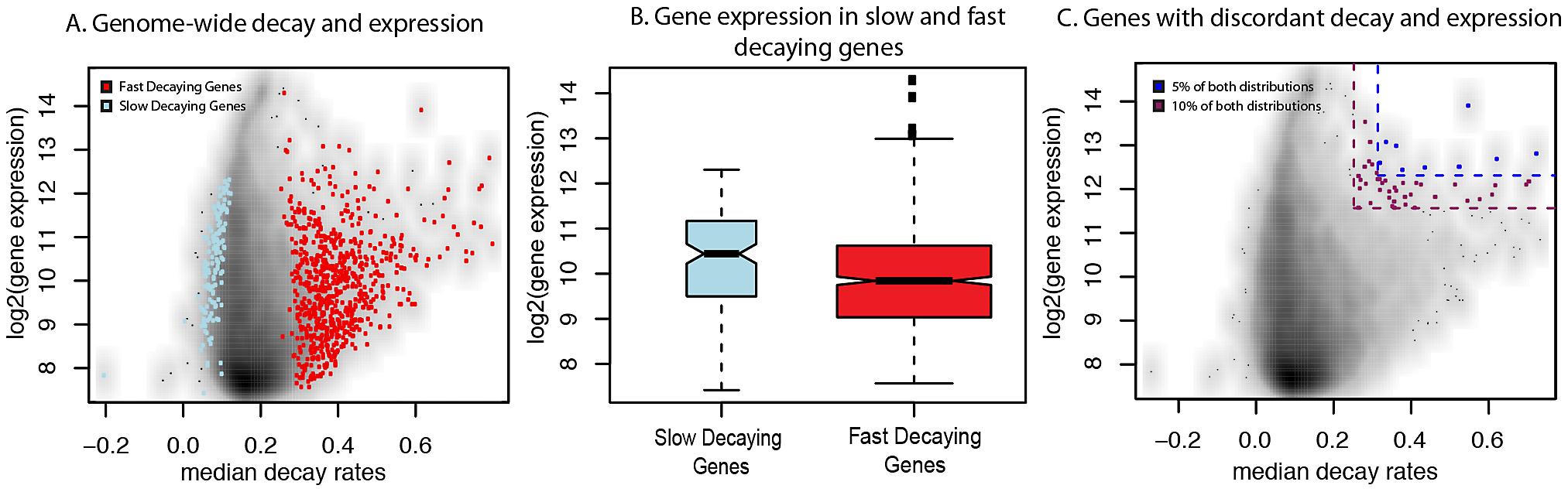 Relationship between gene expression levels and mRNA decay rates across genes.