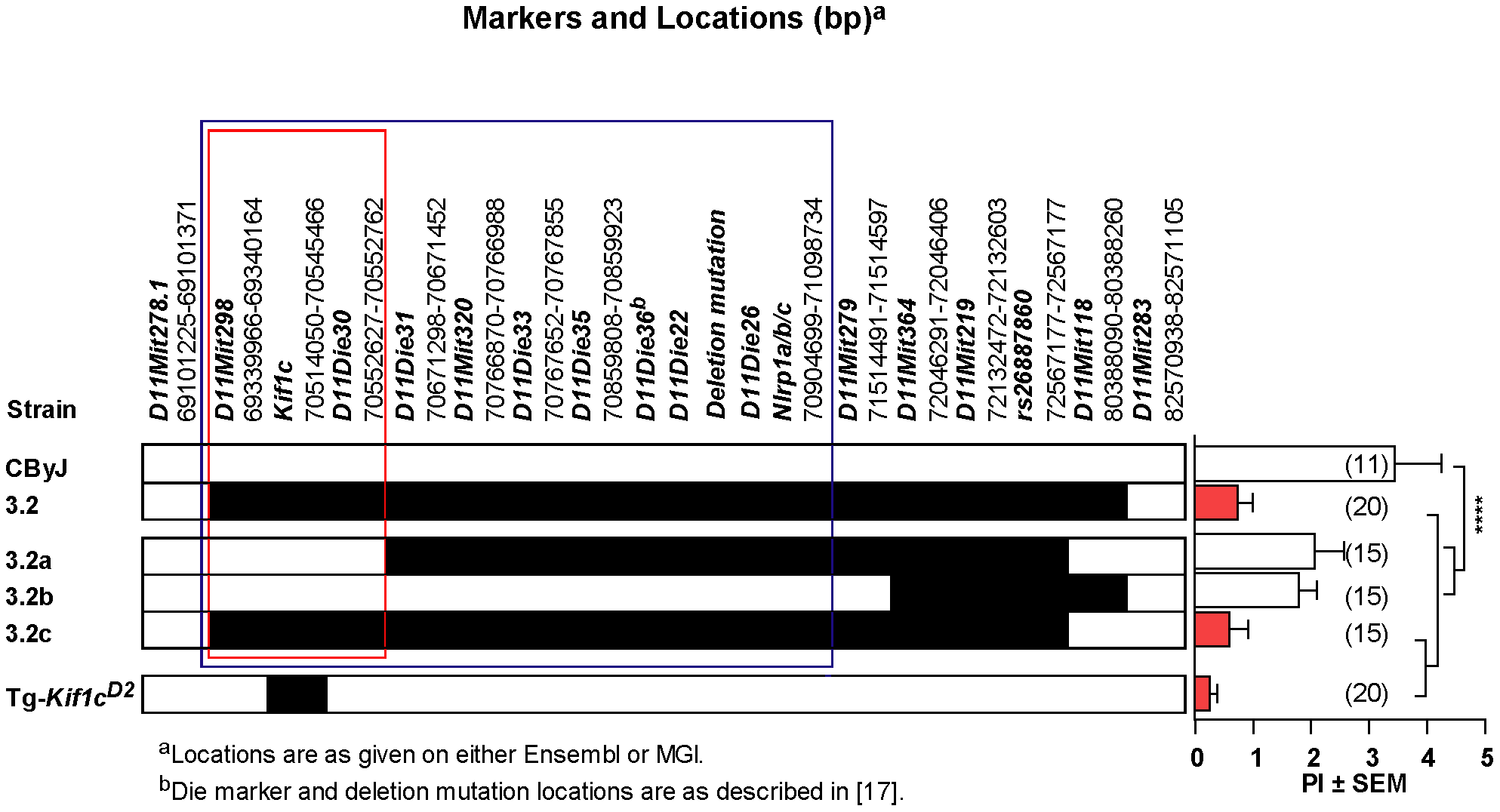 Identification of <i>Orch3</i> as <i>Kif1c</i>.