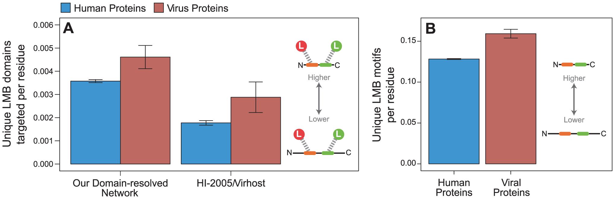 Viral proteins target LMB domains at greater density than human proteins.