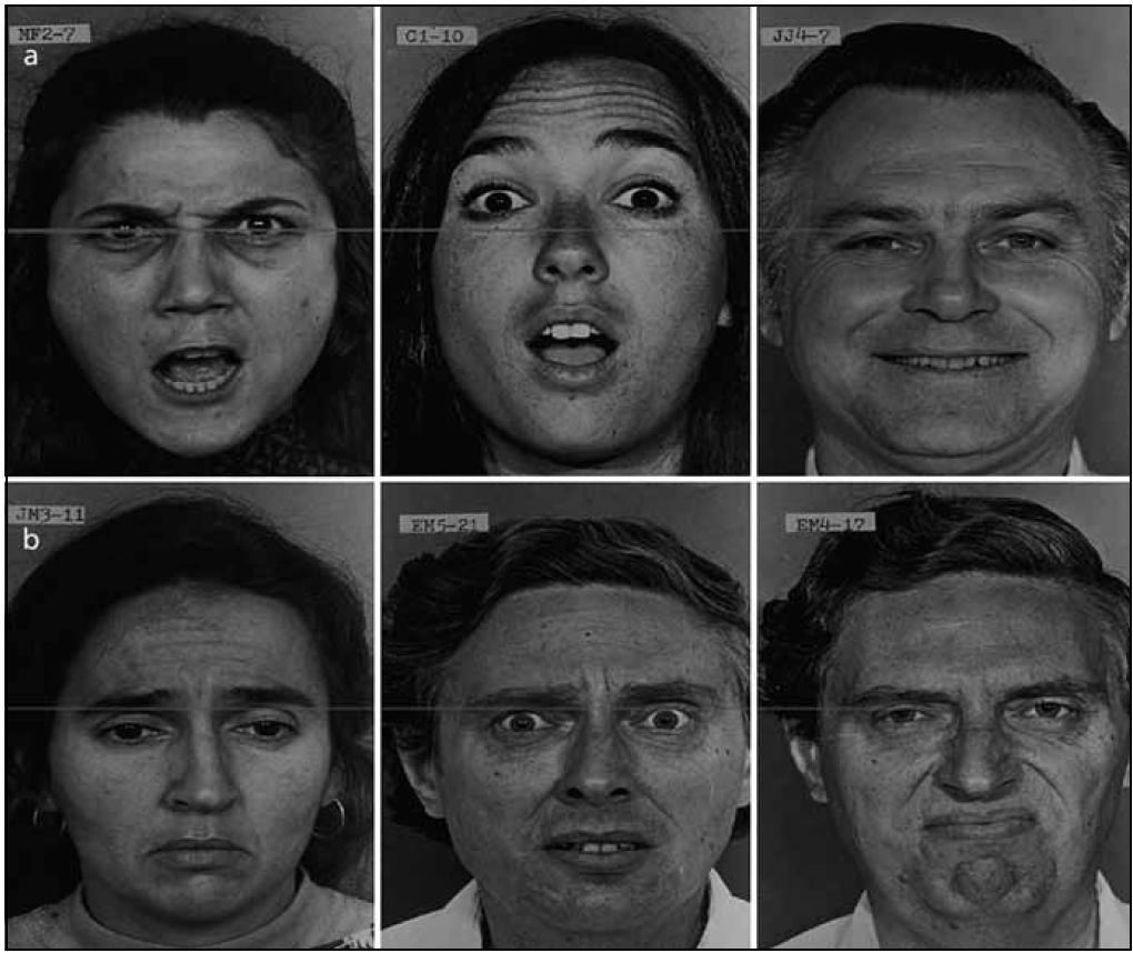 Obr. 1. Ekman a Friesen [23]. Obr. 1a) Zleva doprava: hněv, překvapení, radost. Obr. 1b) Zleva doprava: smutek, strach, znechucení.