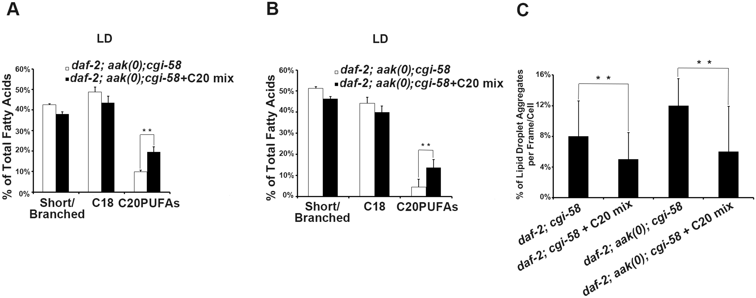 Dietary C20PUFA supplementation reduced the number of lipid droplet aggregates in CGI-58 and AMPK; CGI-58 mutants.